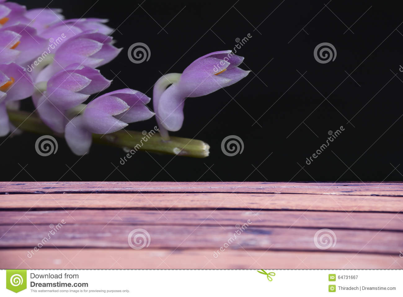 Plank background with black flowers.