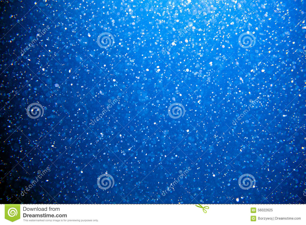 Download Plankton stock image. Image of blue, water, underwater - 56022625