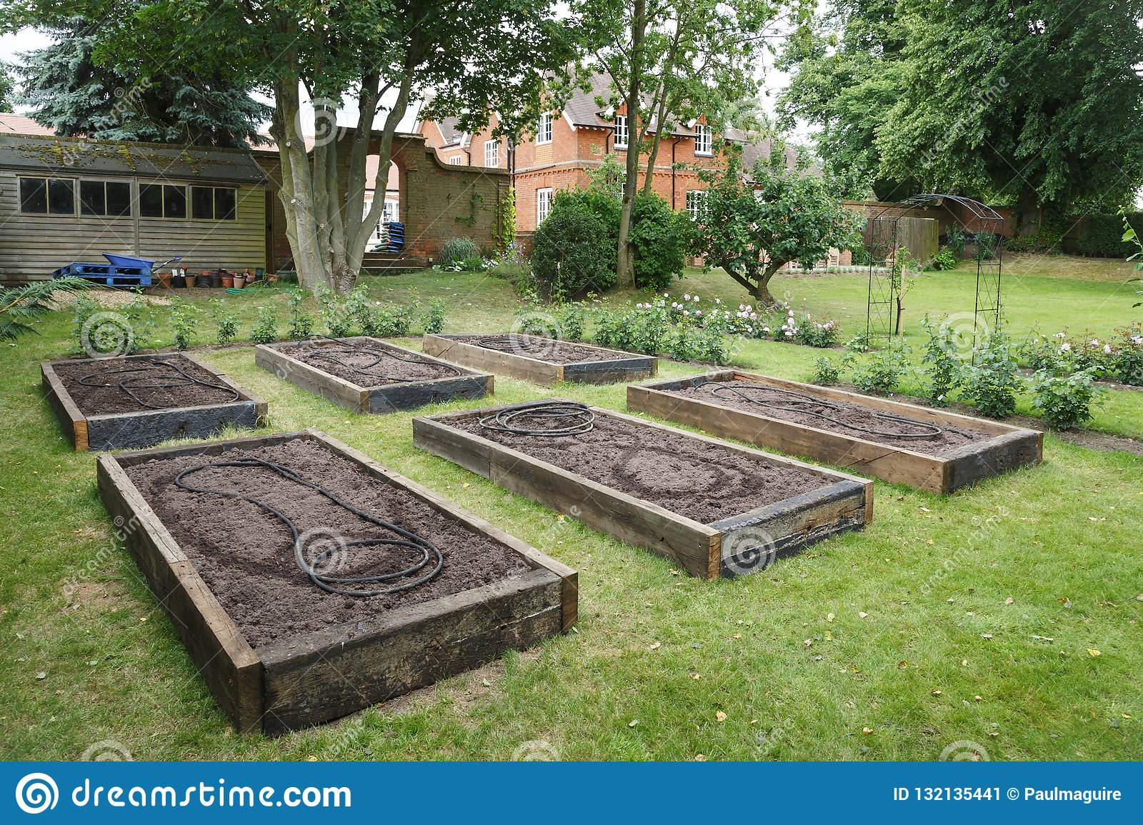 Raised Beds In Vegetable Garden Stock Image Image Of Allotment