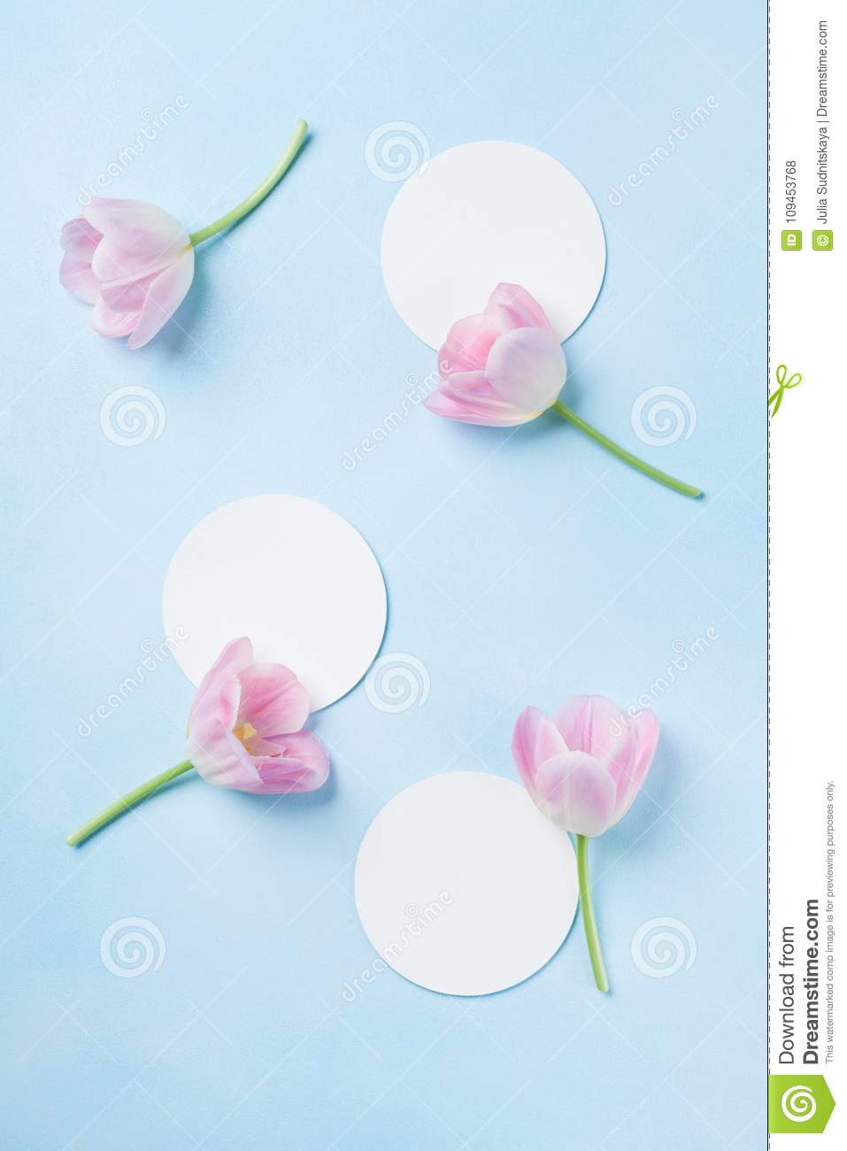 Planning or invitation concept with fresh pink tulip flowers on blue pastel background. Top view. Flat lay.