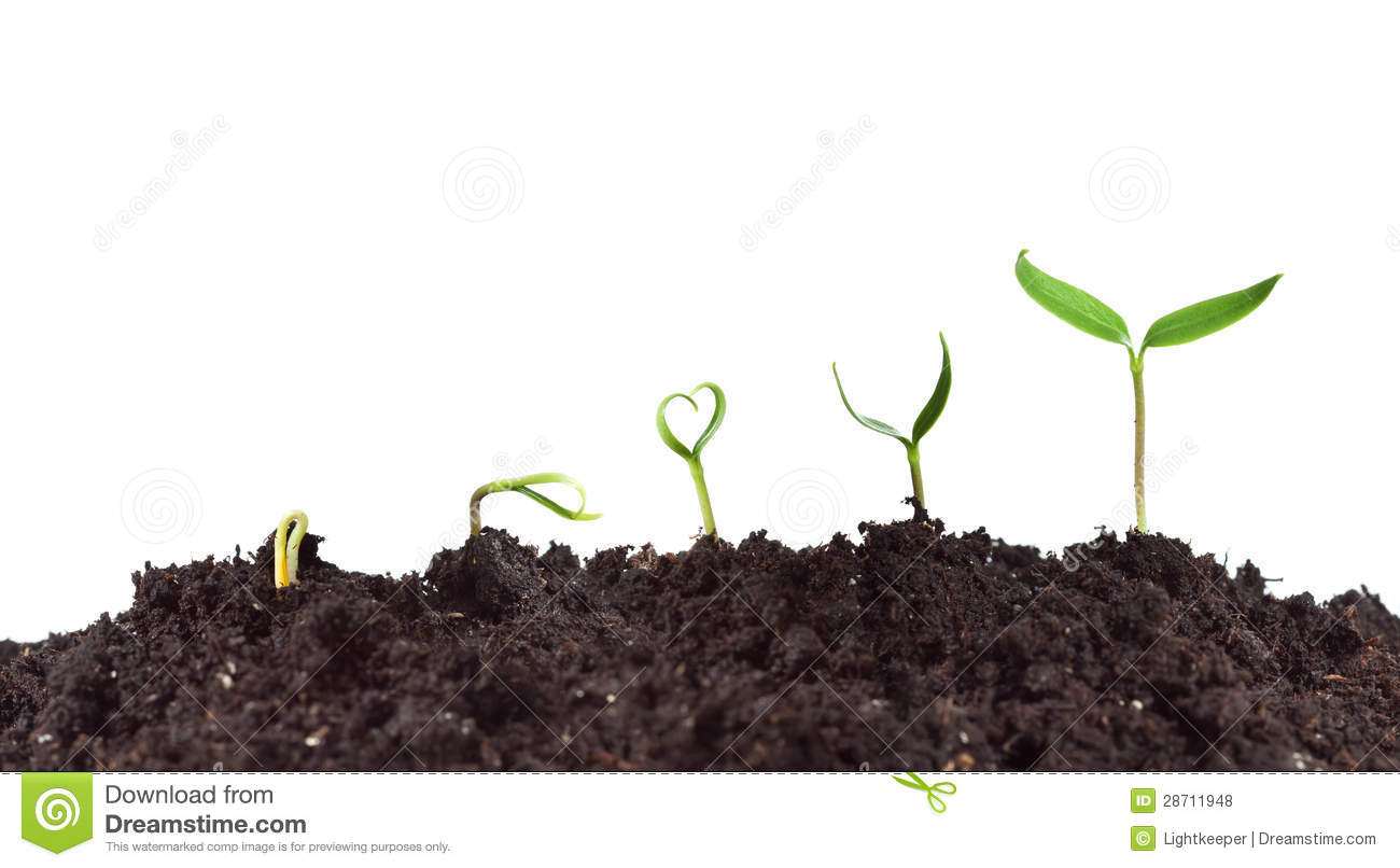 the bible nature stages of growth Human growth development stages human stages of growth and development are differentiated by age and key stages of scientifically supported psychomotor development.