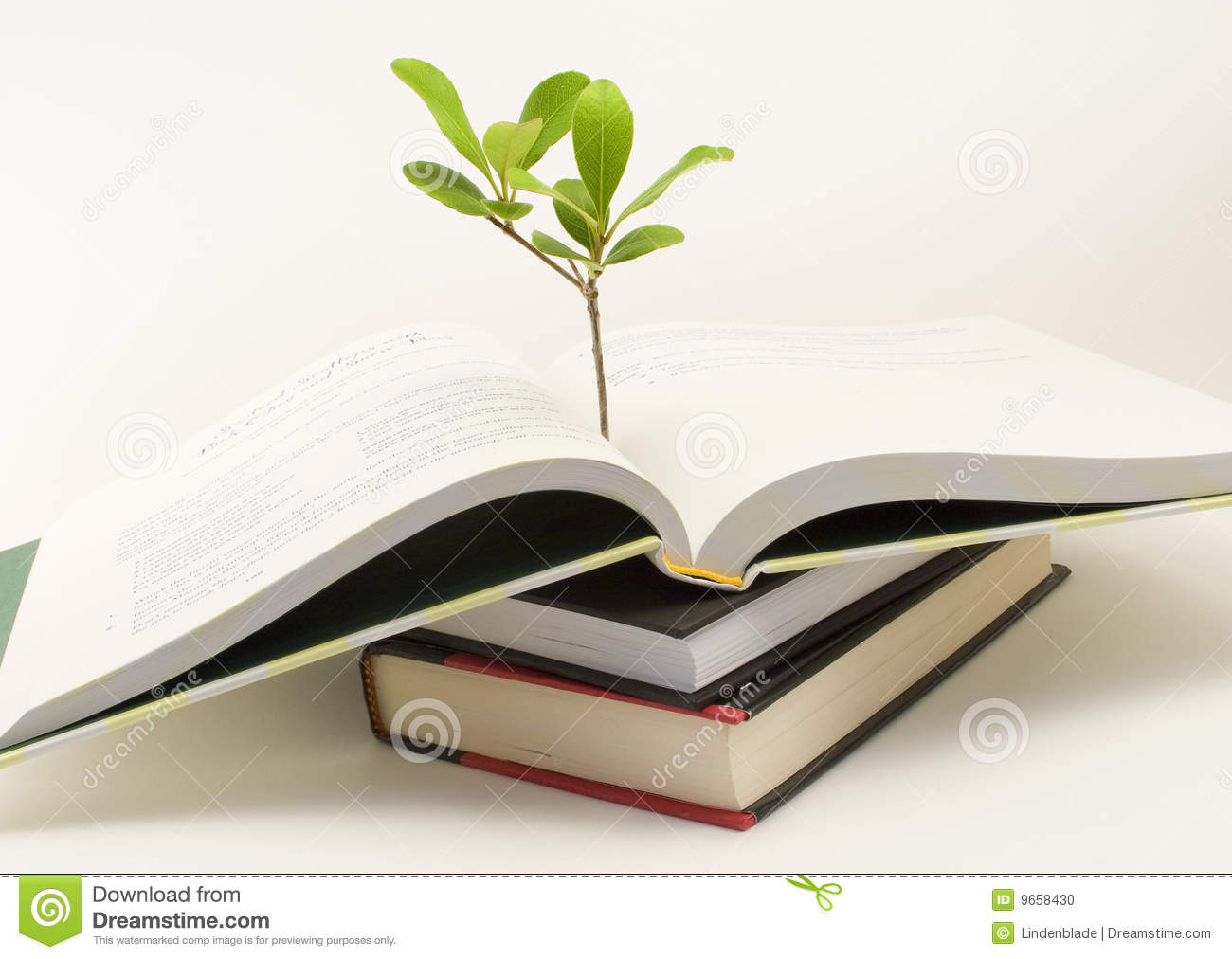 84227d06d376d Plant Growing Out Of Open Book Stock Photo - Image of leaf ...