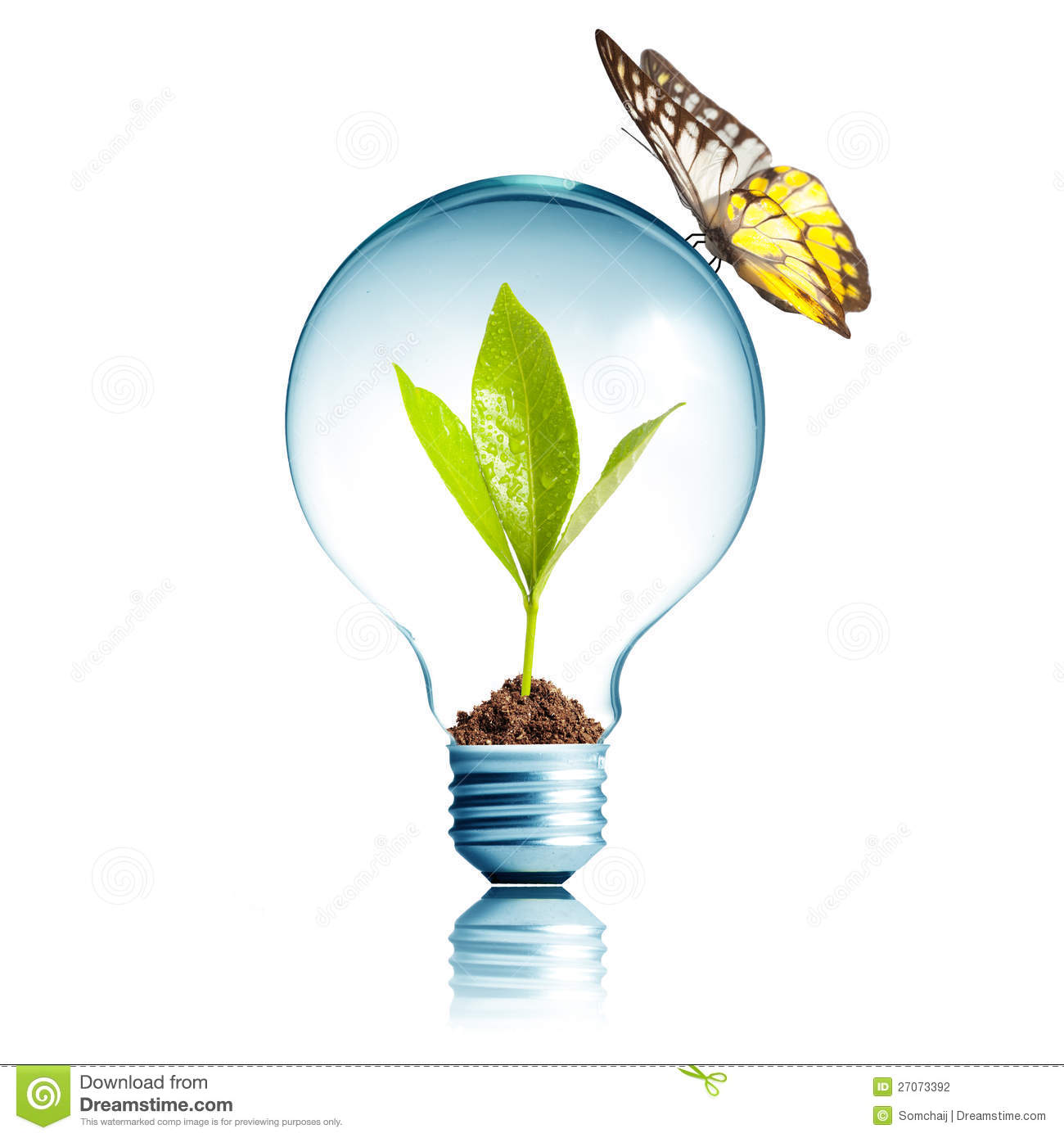 plant inside light bulb with butterfly stock photography image 27073392. Black Bedroom Furniture Sets. Home Design Ideas