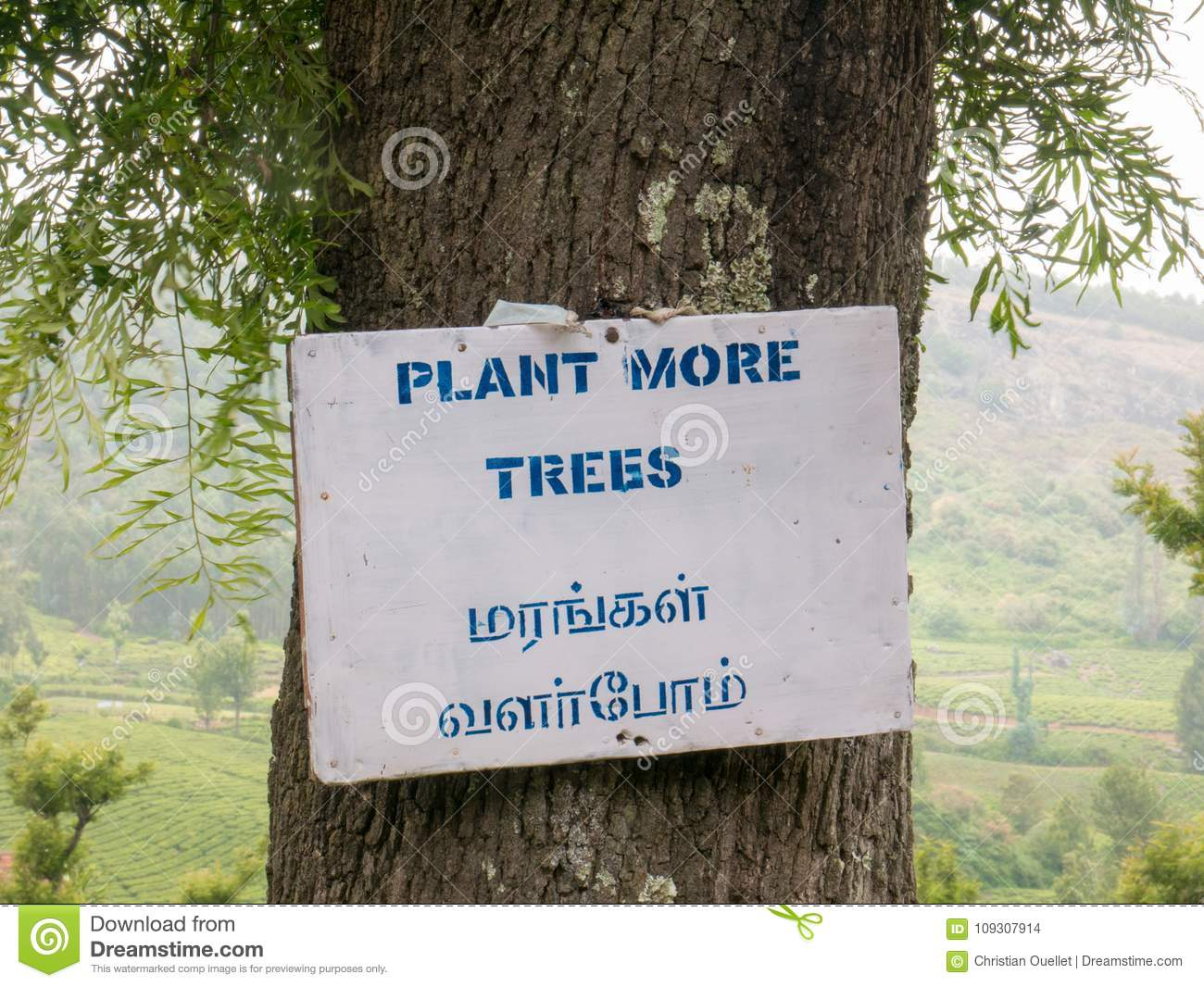 Plant More Trees Sign In Ooty, Tamil Nadu, India Editorial Stock