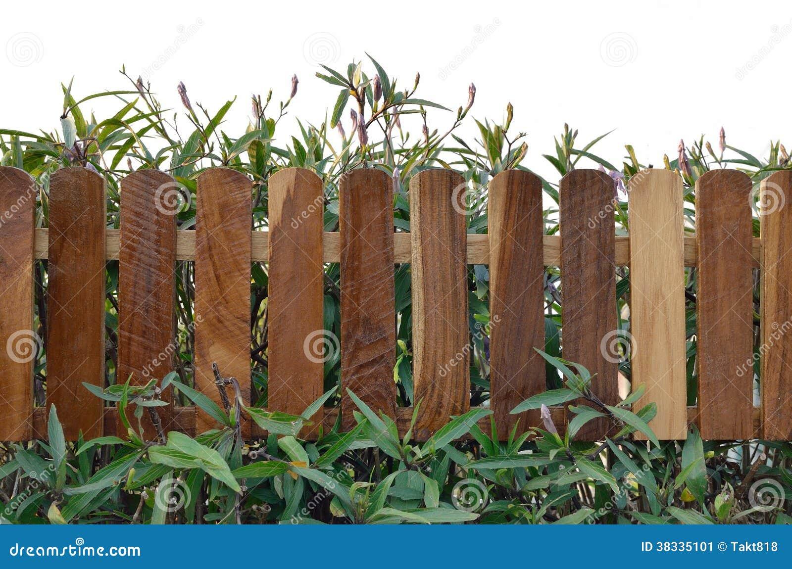 Planta con el cercado de madera imagen de archivo imagen - Cercado de madera ...
