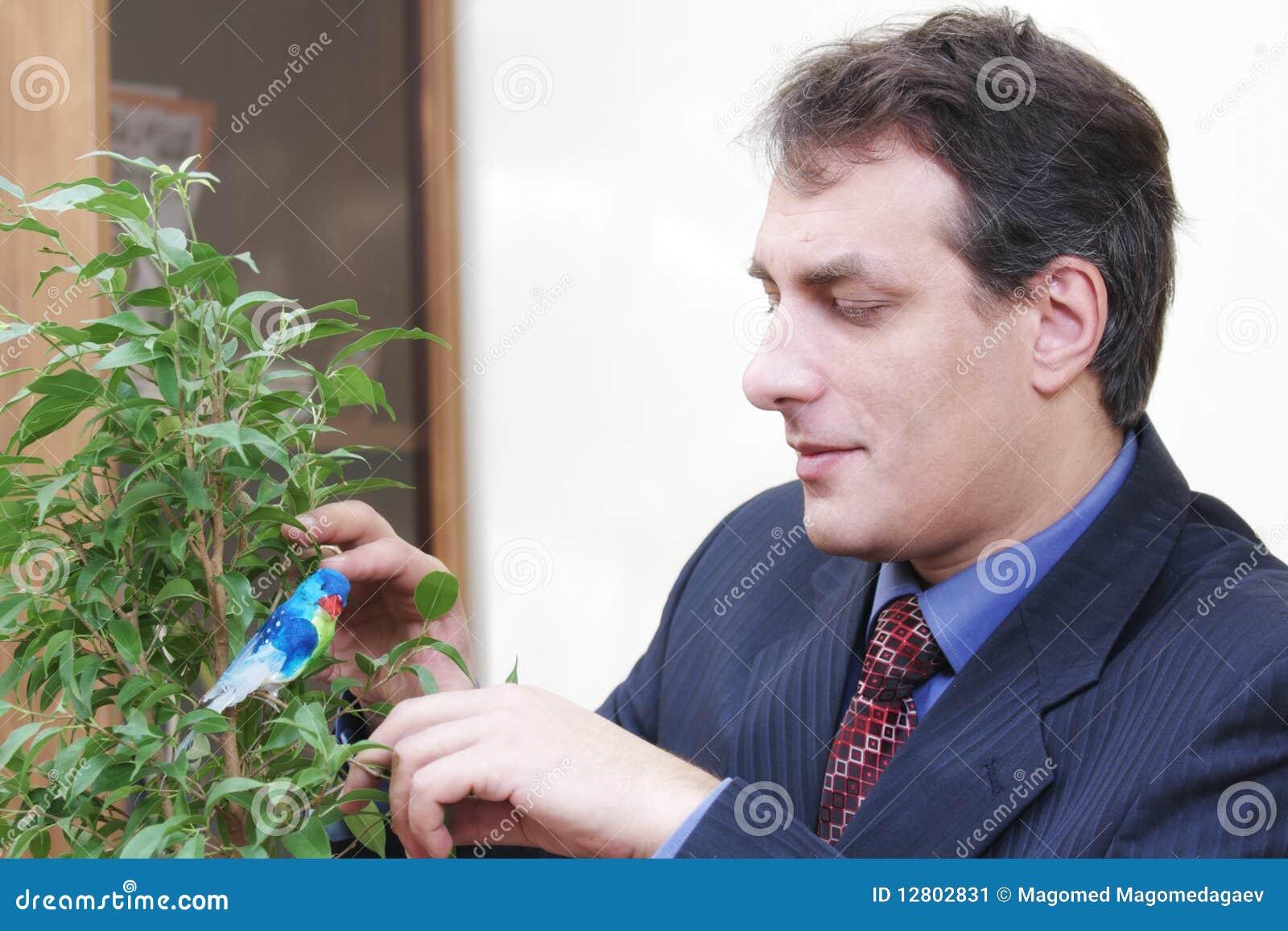 Planta crescente do homem de negócios