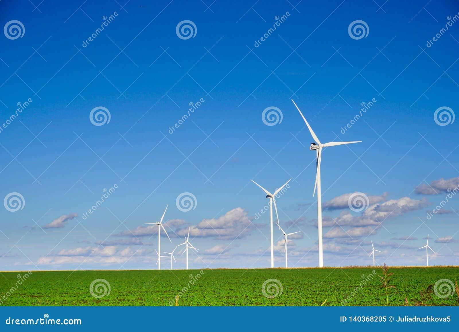 Planta de energias eólicas que consiste em diversas turbinas eólicas que estão em um campo contra um céu azul