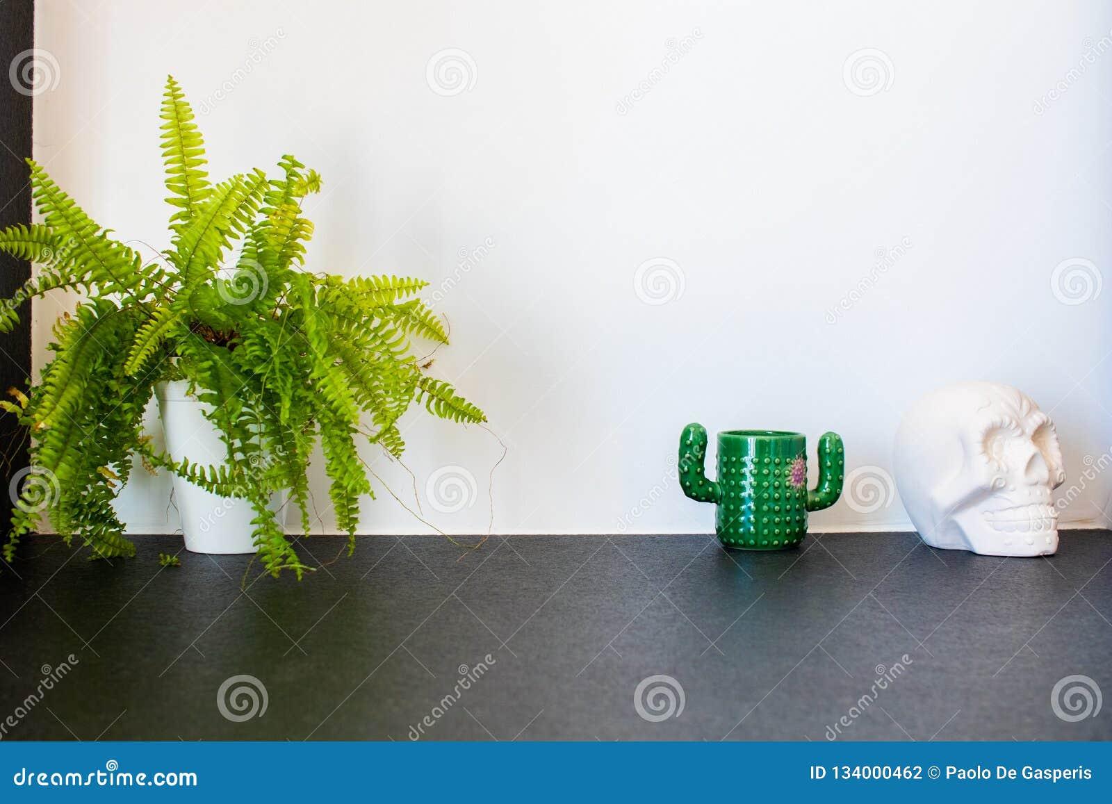 Planta del helecho, taza cactus-formada y cráneo mexicano blanco en yeso