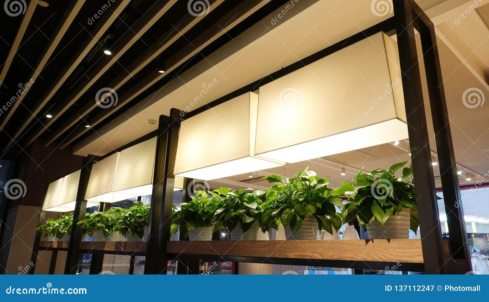 Planta för lampa för tillväxt för ledd växt i kommersiell byggnad