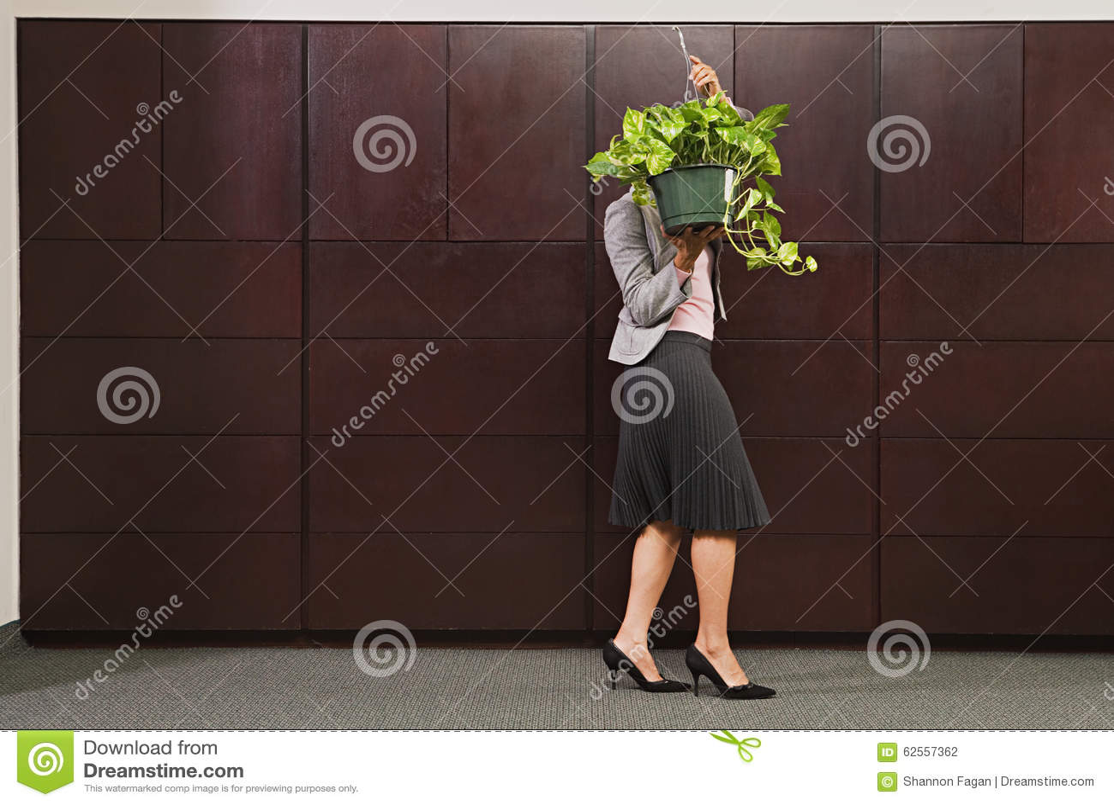Planta levando da mulher de negócio