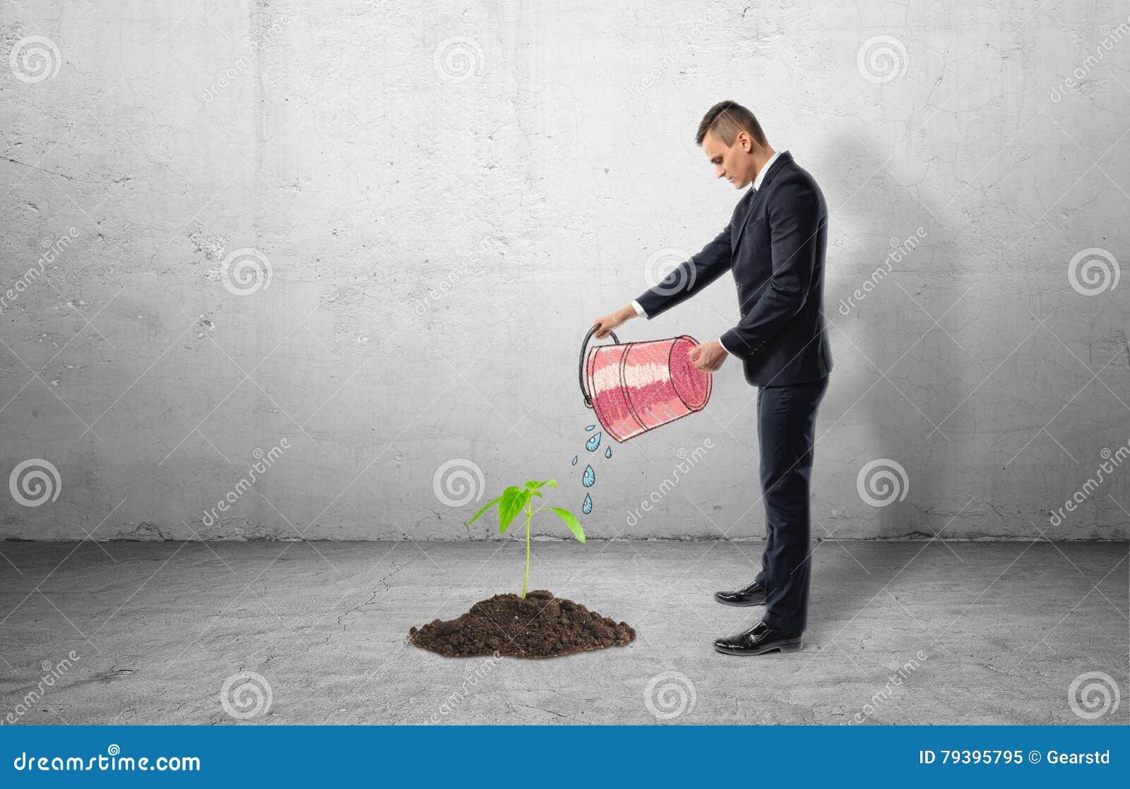 Planta som växer från cement, och affärsman som använder hinken för att bevattna den