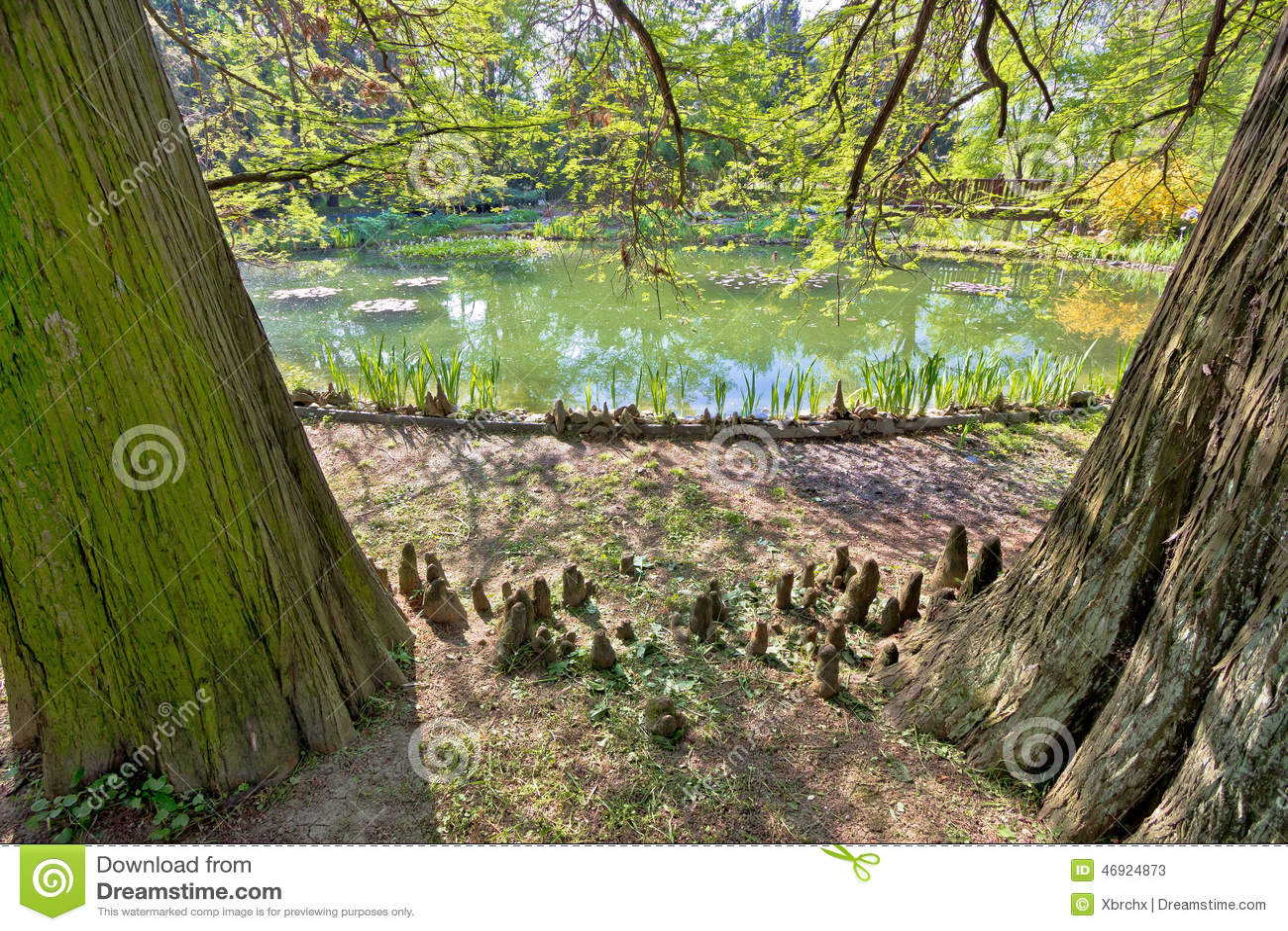Plantas, árboles y lago del jardín botánico de Zagreb
