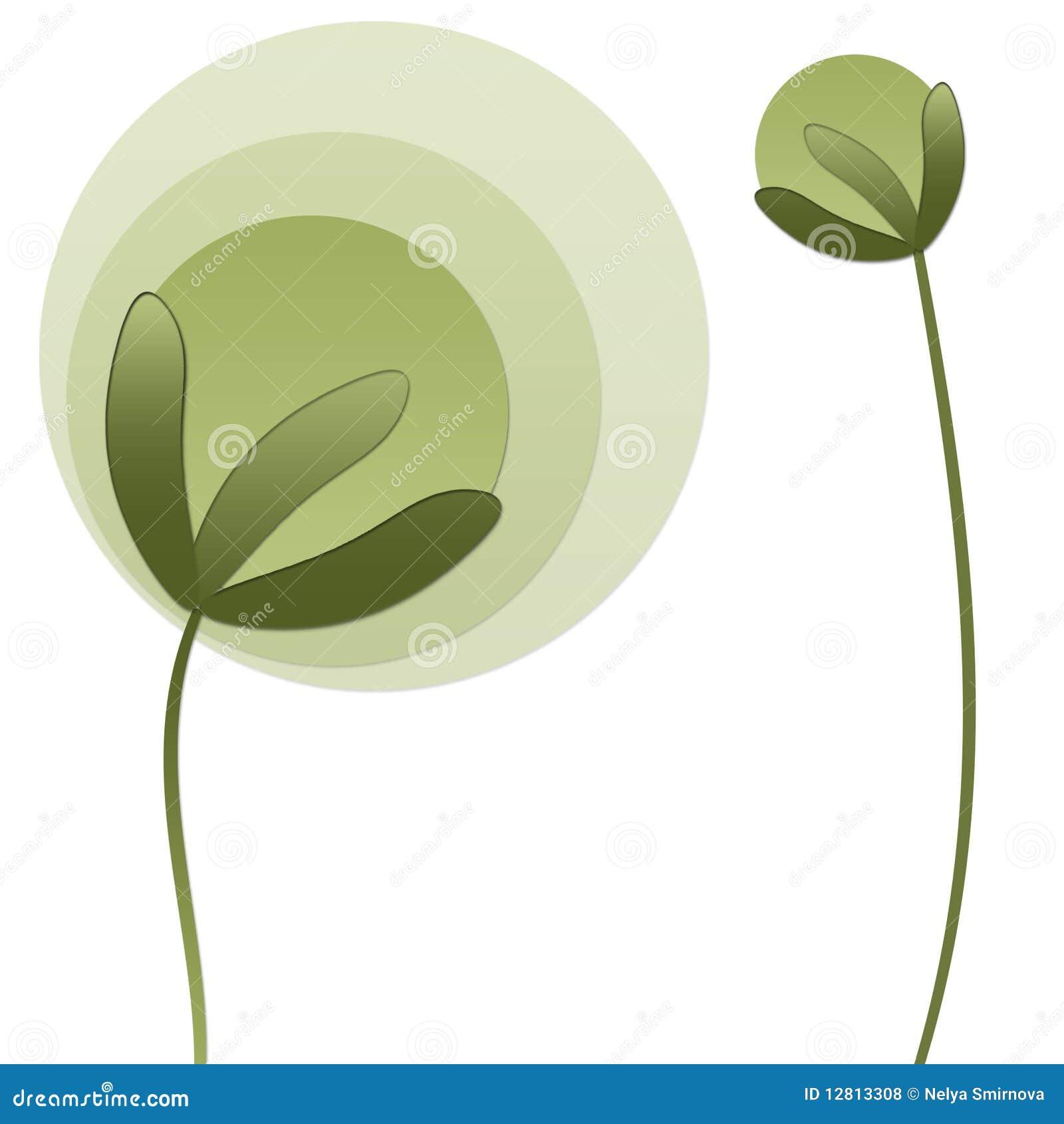 Plantas de Absrtact