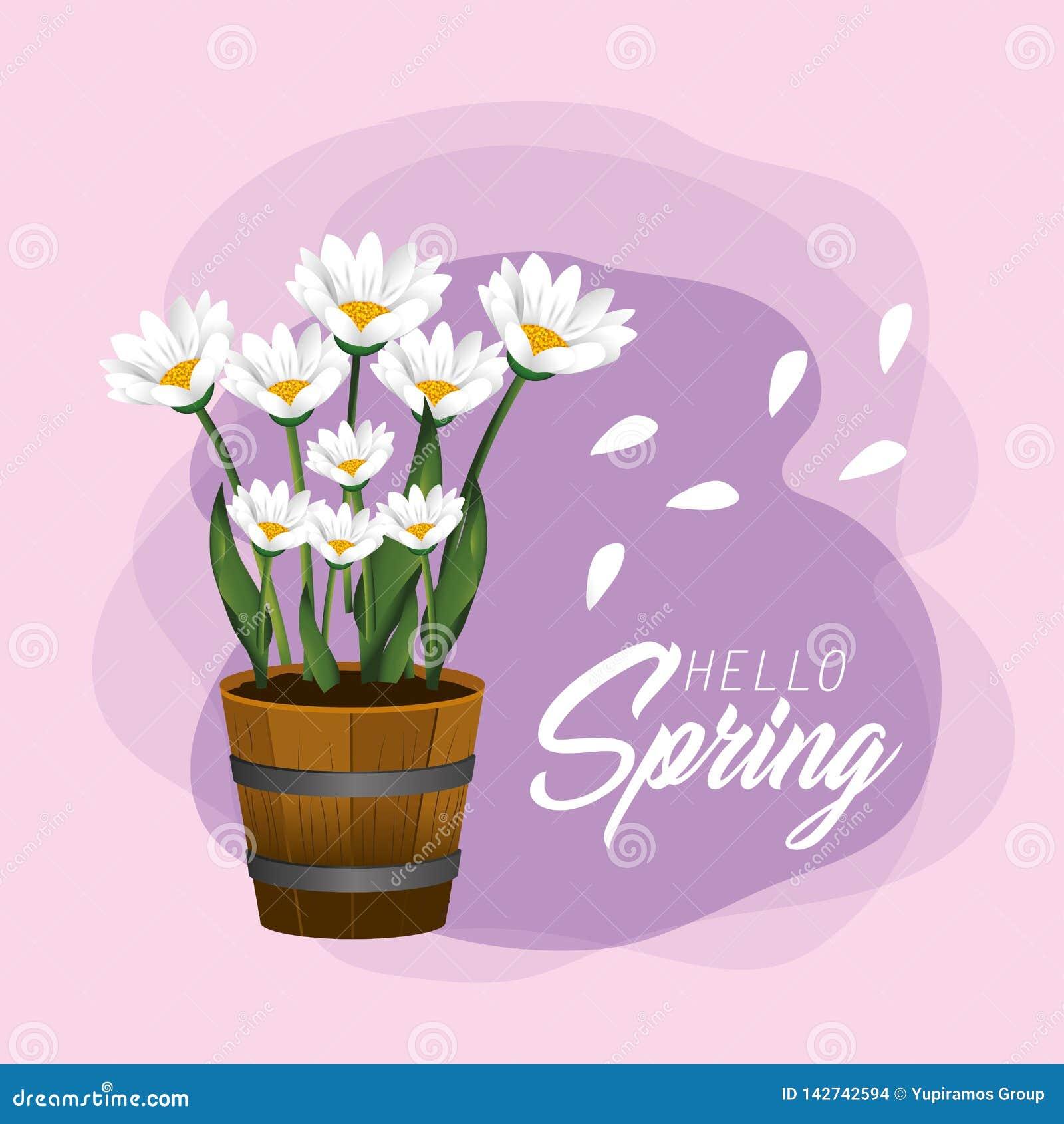 Plantas de las flores de la primavera con los pétalos exóticos
