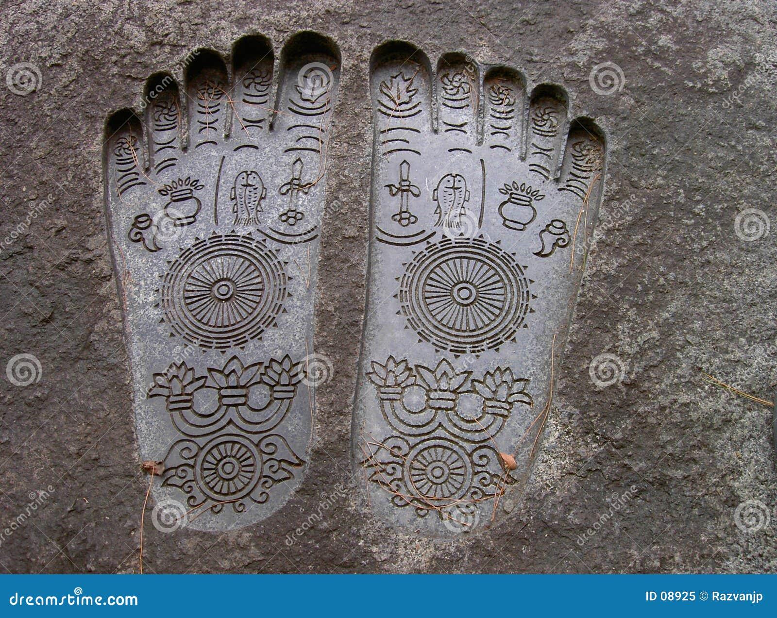 Plantas del pie de Buddha