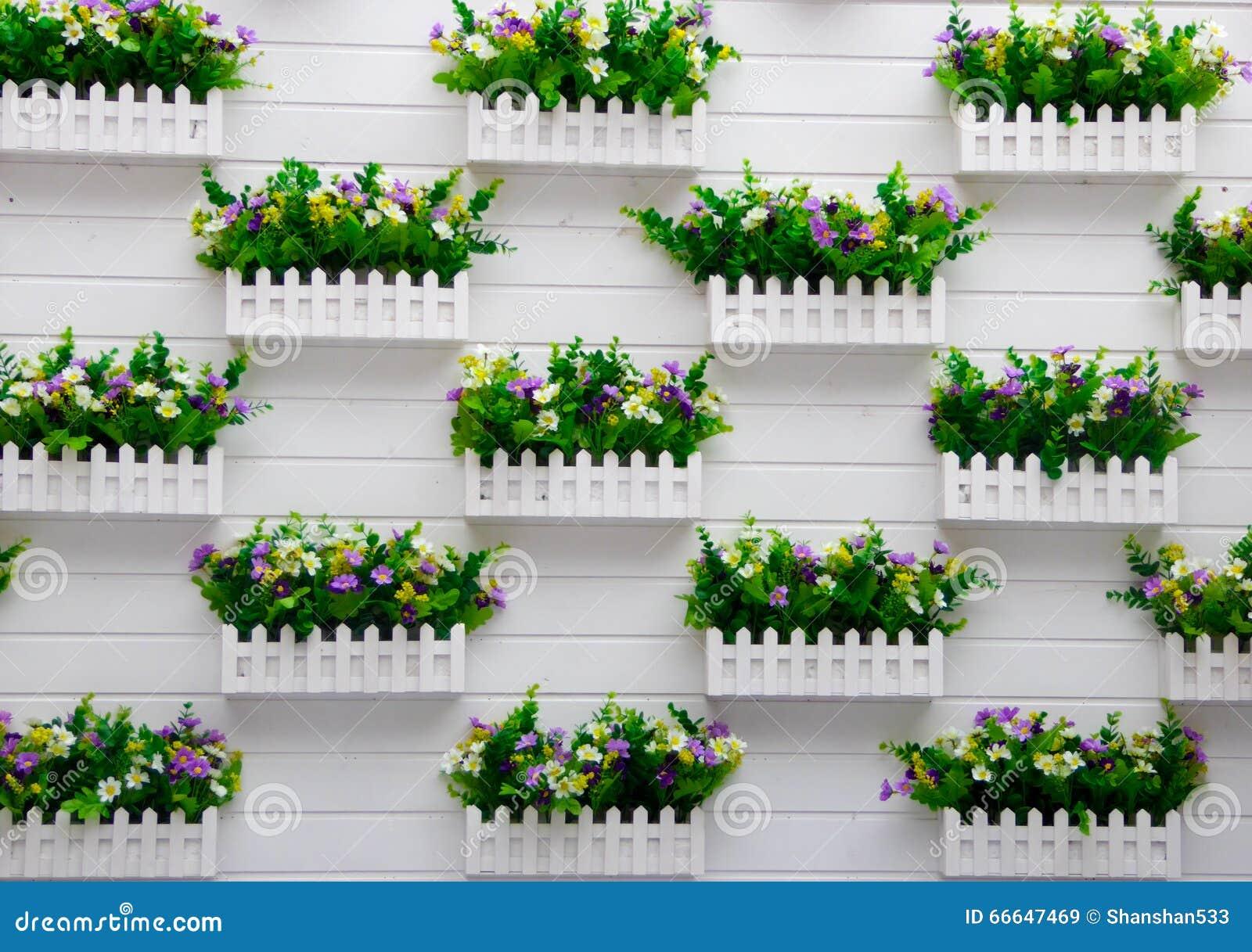 Plantas en conserva que cuelgan en la pared imagen de - Fotos en la pared ...
