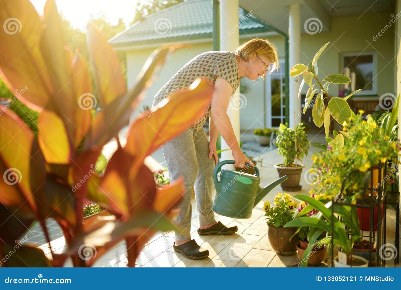 Plantas Florecientes De Riego De La Mujer Mayor Hermosa En