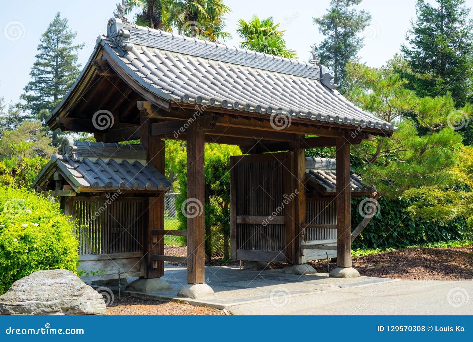 Plantas no jardim japonês