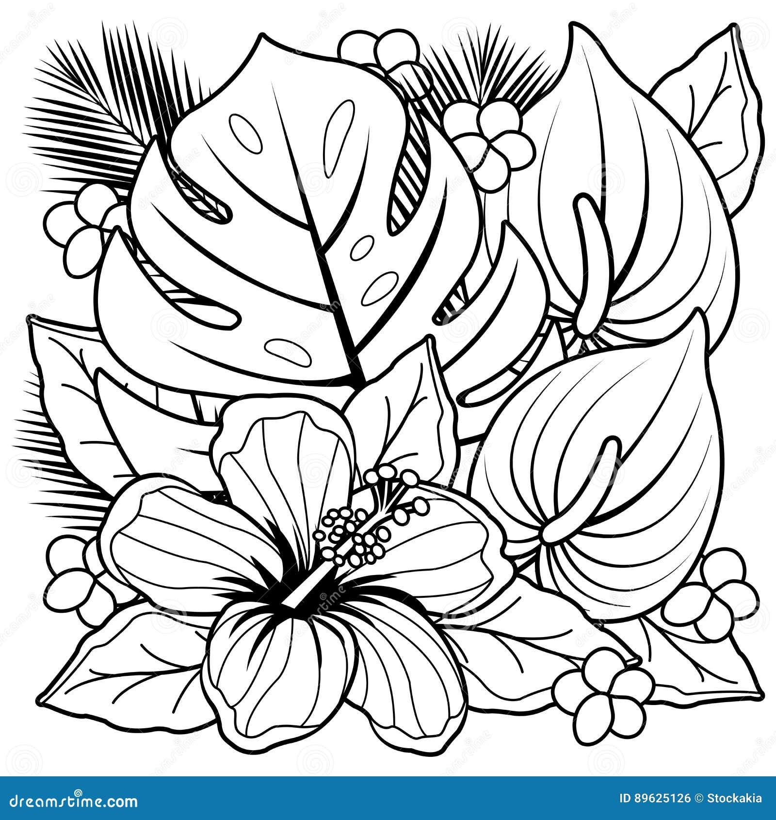 Plantas Tropicais E Pagina Do Livro Para Colorir Das Flores Do