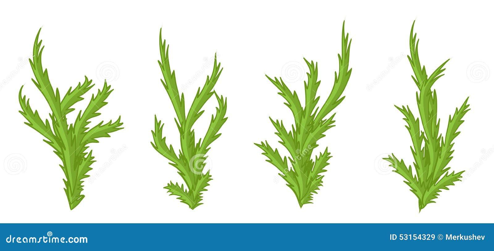 Cosas Para Photoscape Flores Y Plantas Arboles Ps: Plantas Y Arbustos. Arboles Y Plantas Frutales En Flor