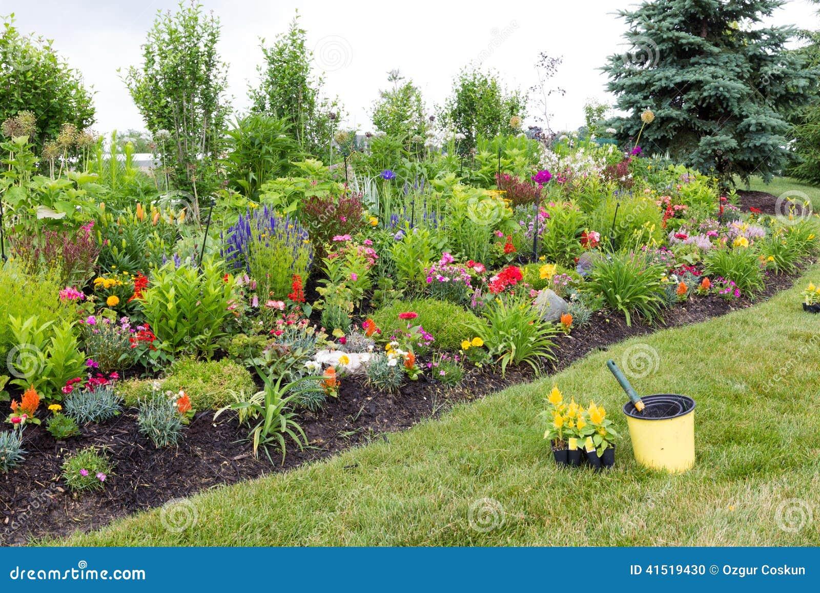 Plantant les jeunes plantes jaunes de celosia dans un jardin aménagé en parc formel coloré avec un parterre vert luxuriant plein des plantes ornementales