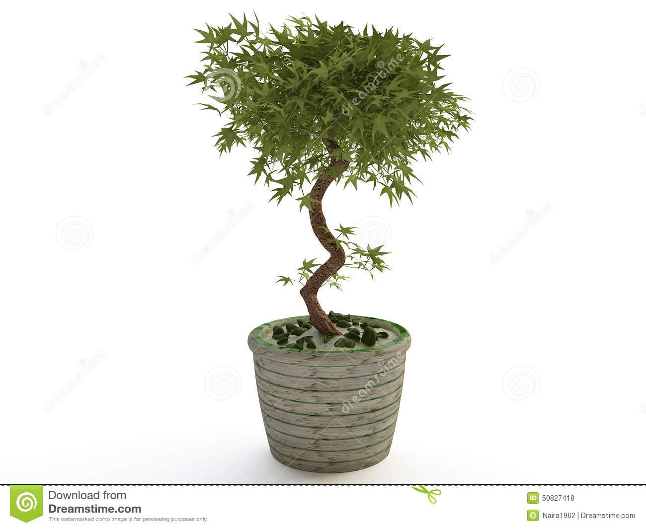 Plante d 39 int rieur arbre de bonsa s dans le pot de fleur for Pot de decoration interieur