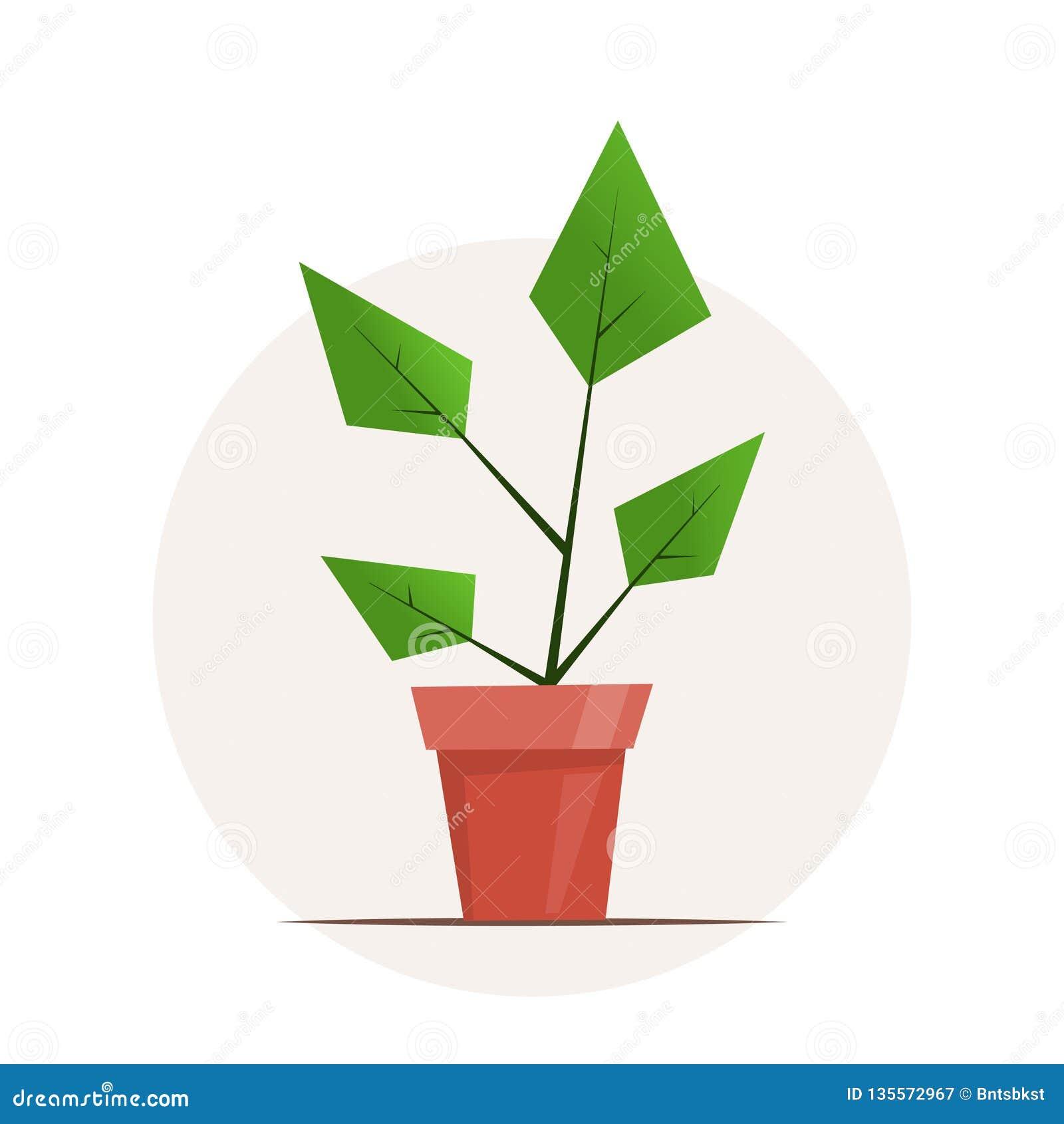 Plante d intérieur dans un pot Illustration graphique simple mignonne de vecteur dans le style plat pour la conception de fleuris