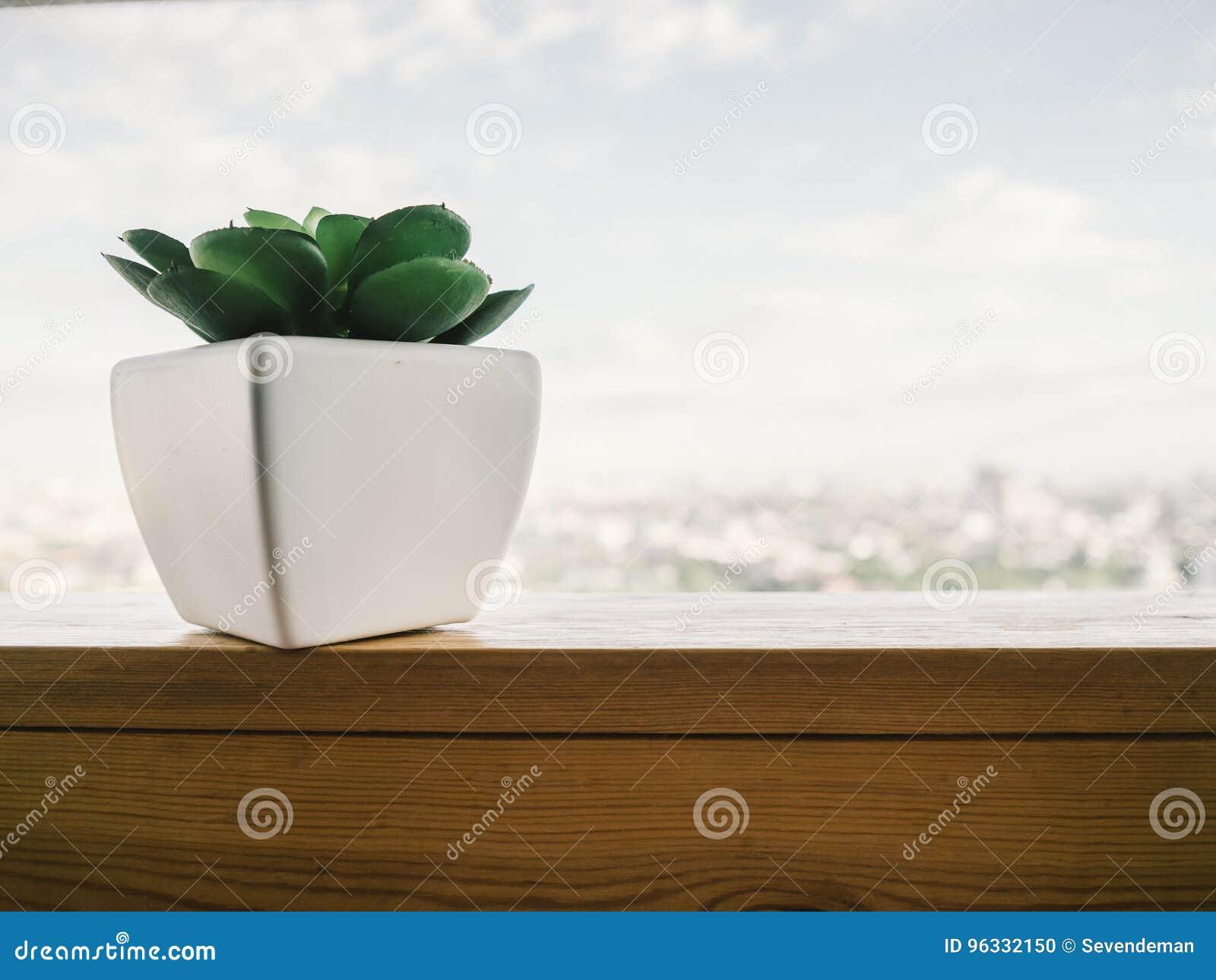 Bord De Fenetre Interieur plante en pot au bord de fenêtre photo stock - image du