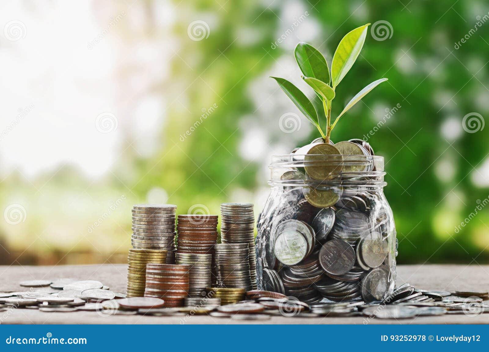 Plante las monedas crecientes en el tarro de cristal con concentrado financiero de la inversión