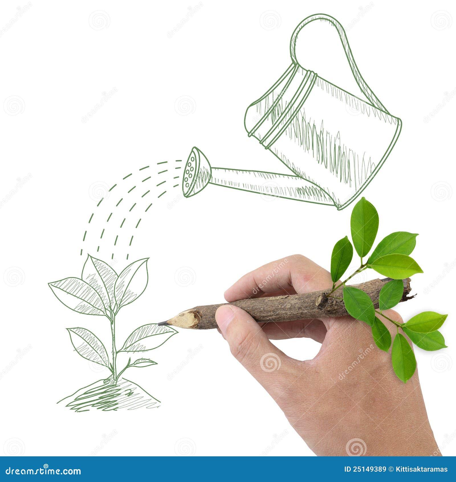 plante verte et bidon d 39 arrosage de dessin images libres de droits image 25149389. Black Bedroom Furniture Sets. Home Design Ideas