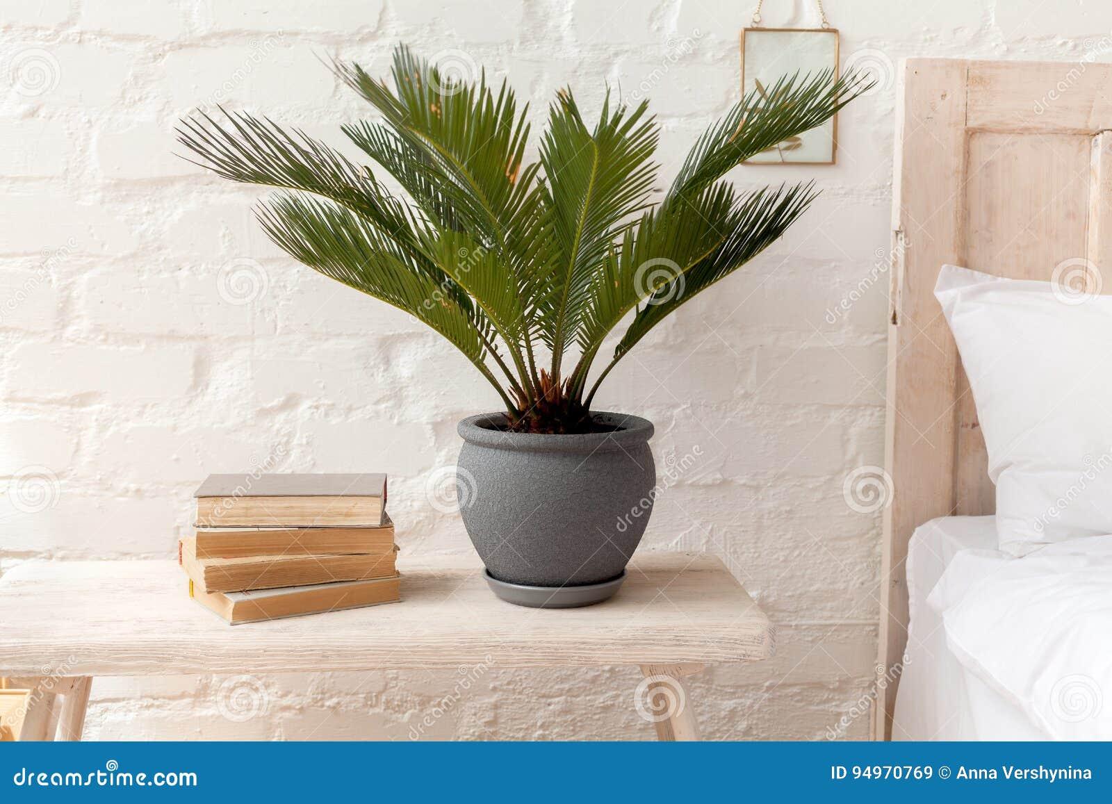 Plante Verte Et Les Livres Dans La Chambre A Coucher Image