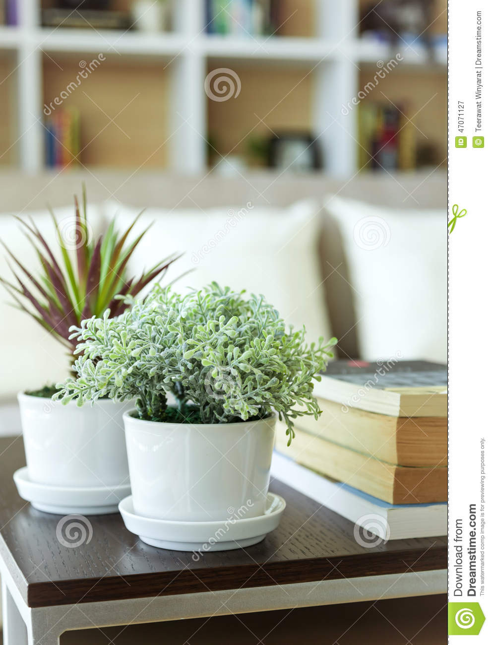 Plante verte sur la d coration de maison de table photo stock image 47071127 - Plantes vertes de maison ...