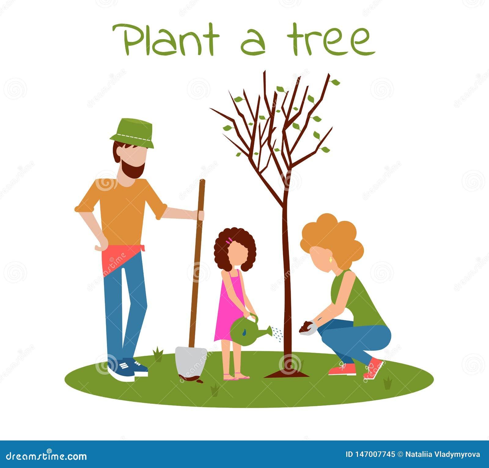 Plantera en tree