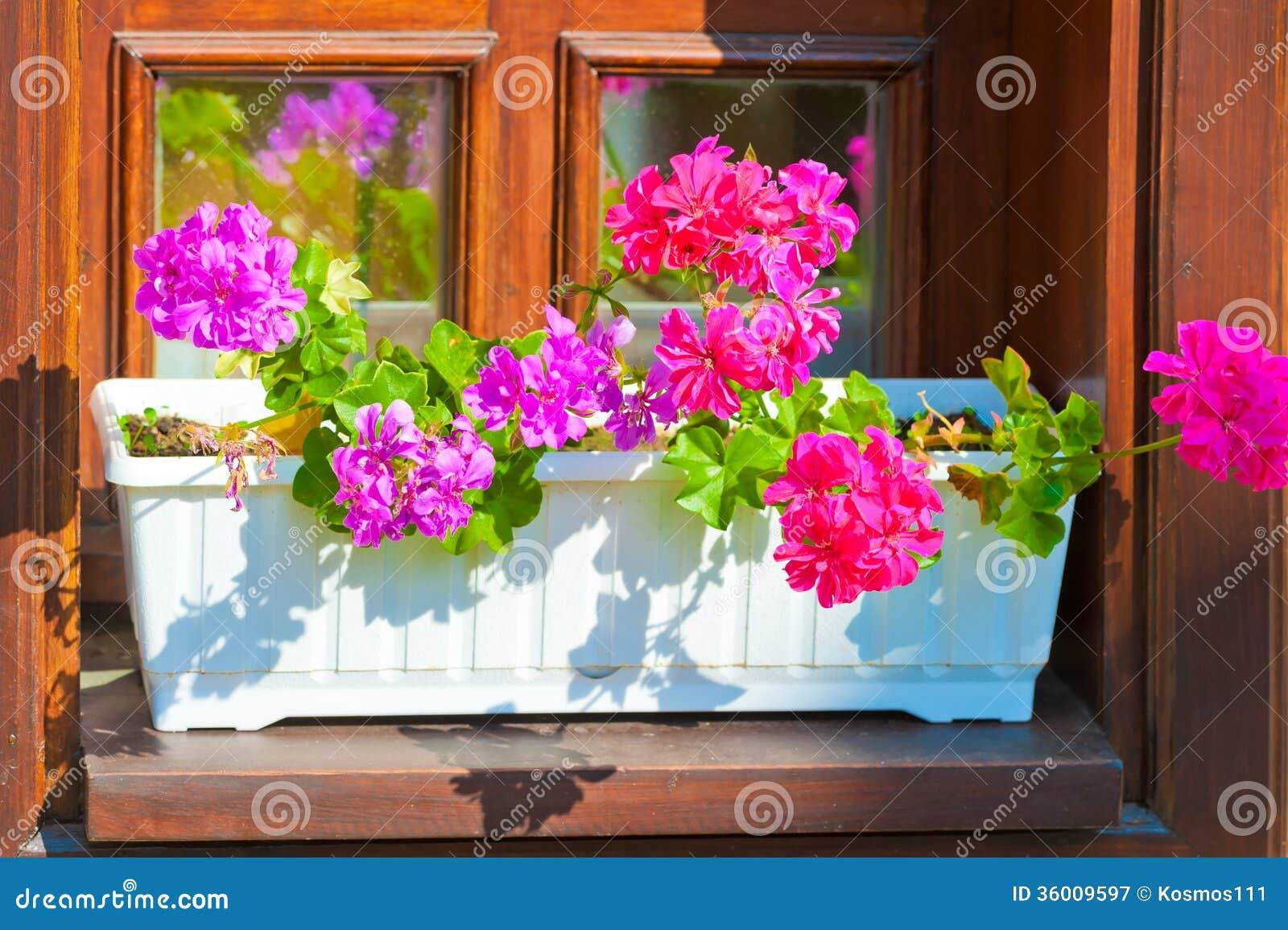 Planters met roze bloemen op de vensterbank stock afbeelding afbeelding 36009597 - Tuin decoratie buitenkant ...