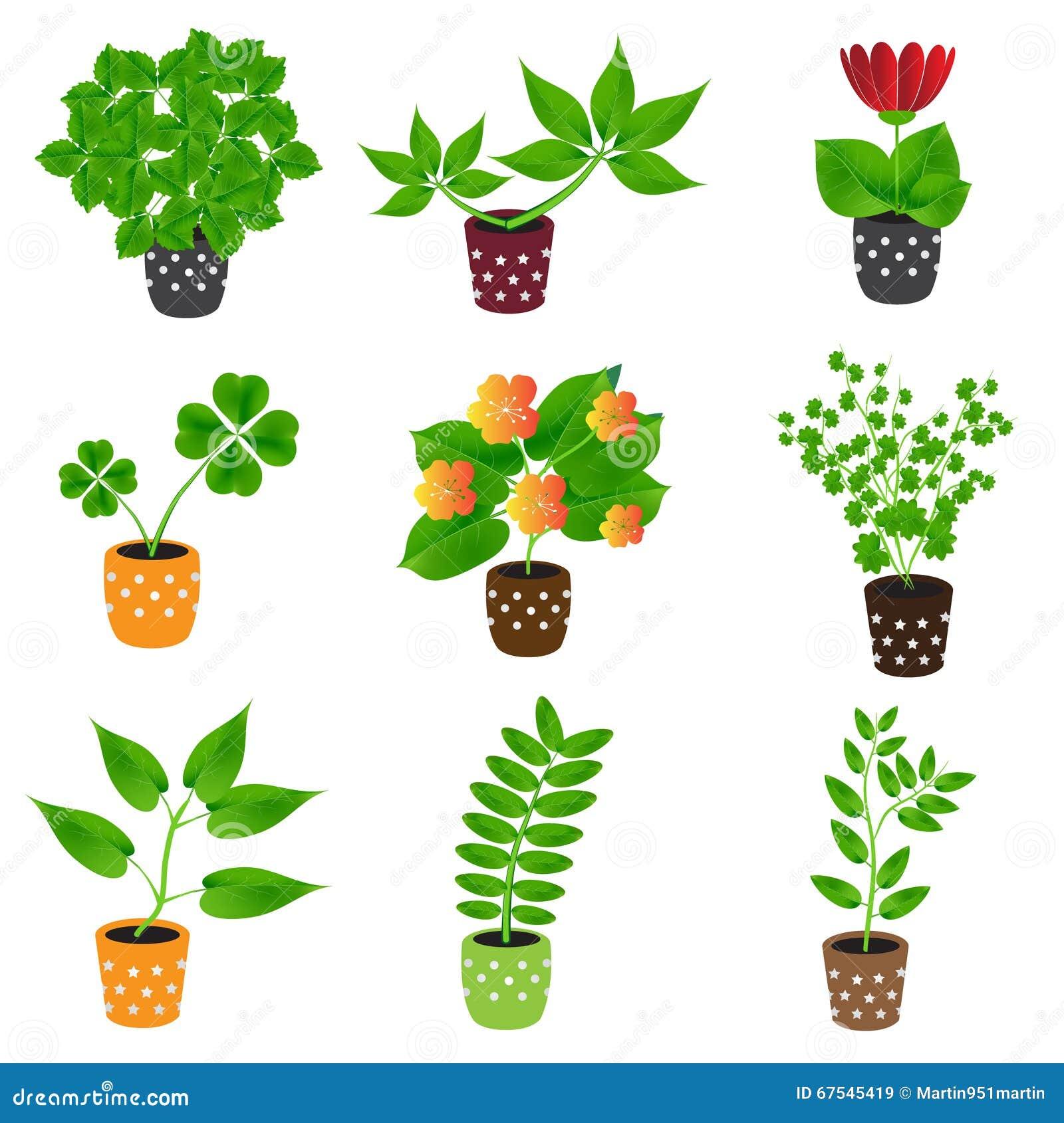 Plantes dintérieur et fleurs à la maison dans les icônes colorées de pot images