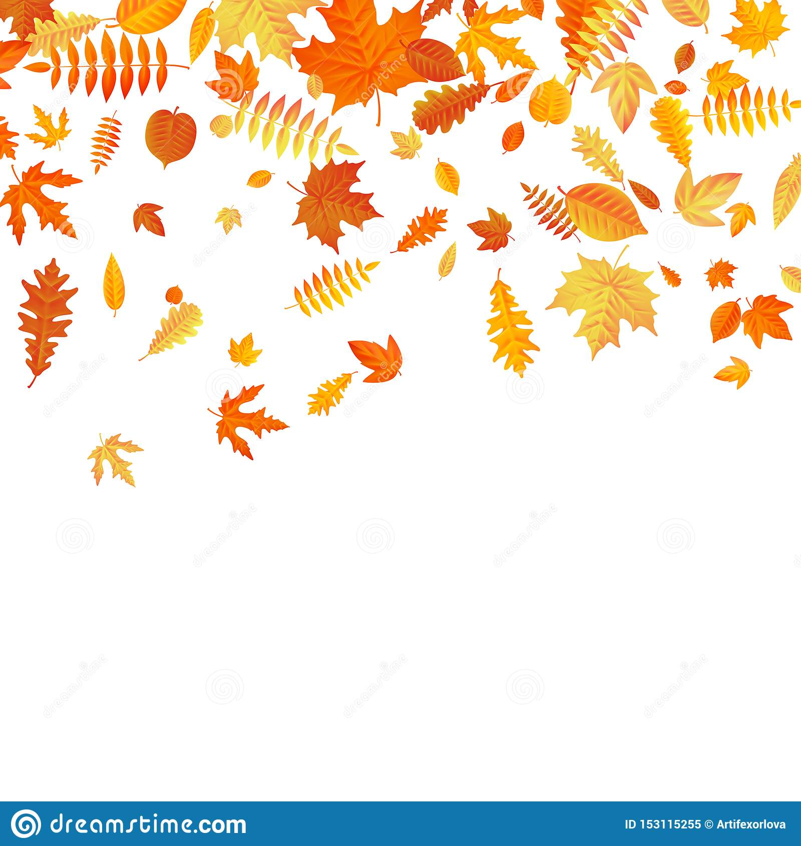 Plantilla anaranjada y amarilla de las hojas de otoño que cae EPS 10