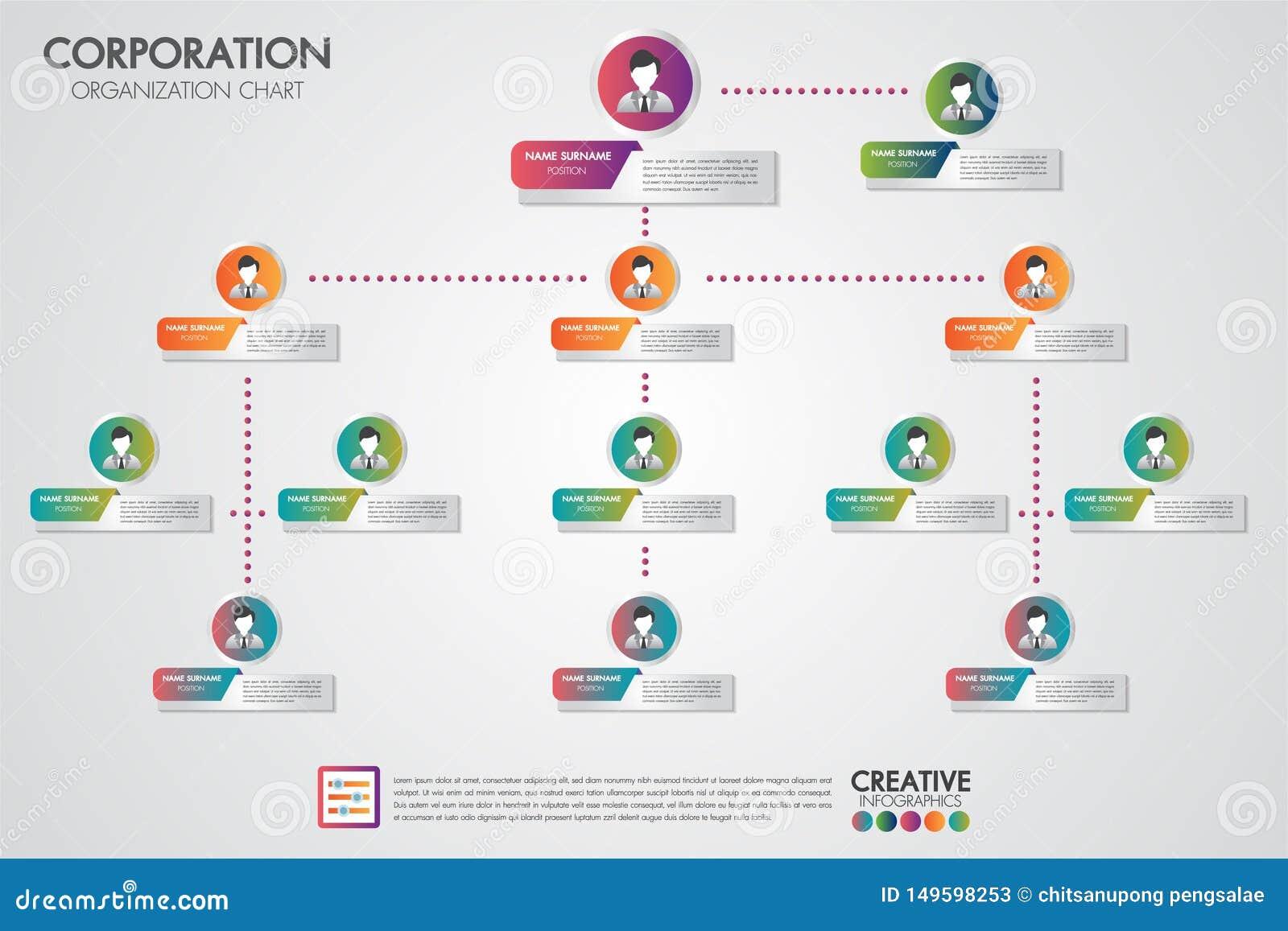 Plantilla de la carta de organización corporativa con los hombres de negocios de los iconos Infographics del vector y simple mode