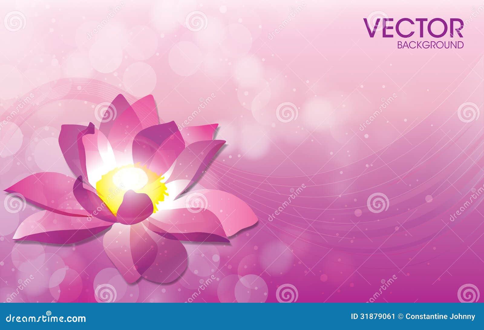 Plantilla del fondo del vector de la flor