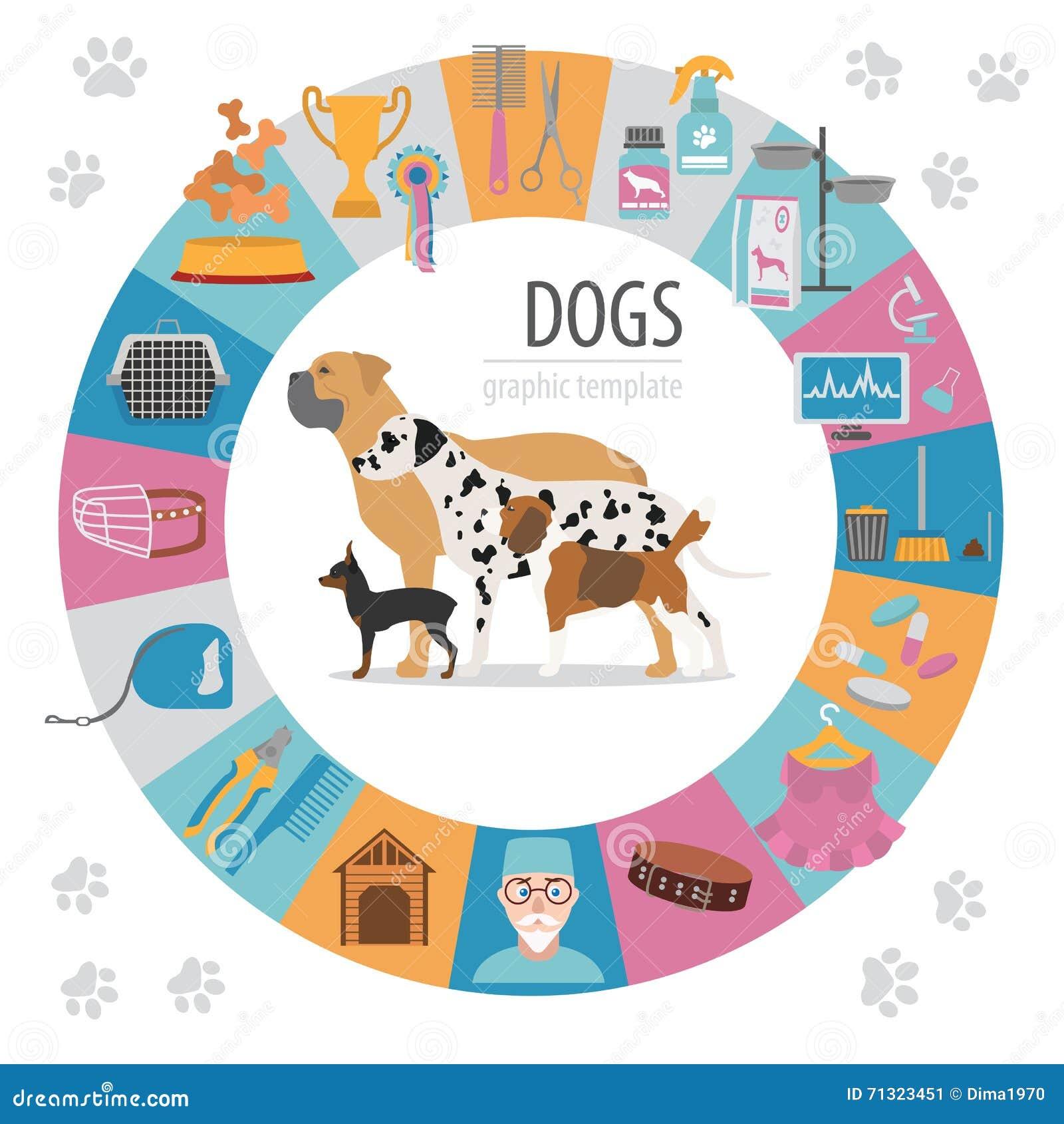 Plantilla del gráfico de la información del perro Cuidado de Heatlh, veterinario, nutrición, exhibiti