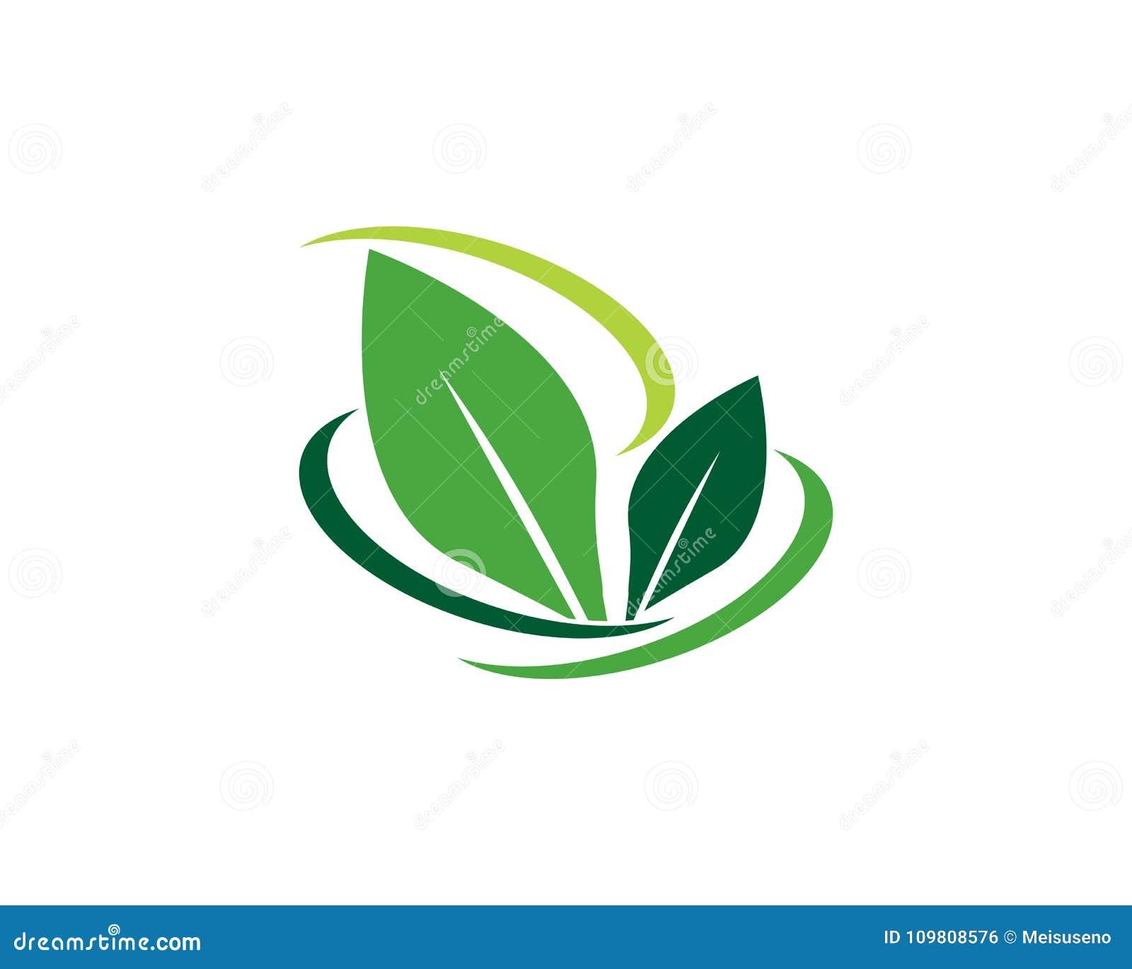 Plantilla Del Logotipo De La Hoja Del árbol Stock De Ilustración