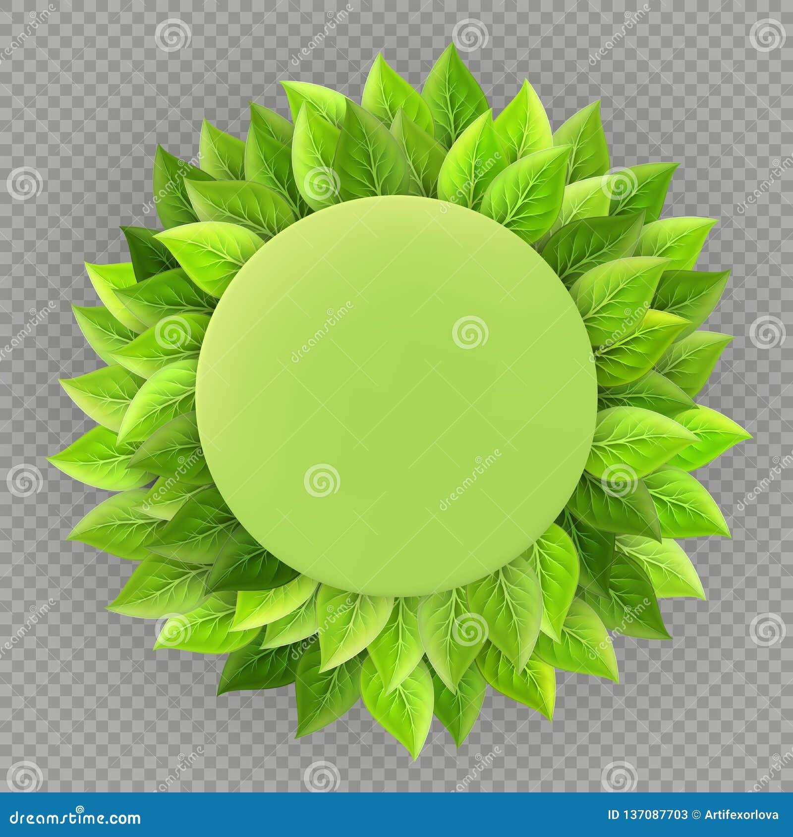Plantilla feliz del Día de la Tierra Tema de la ecología Marco verde fresco brillante de las hojas aislado en fondo transparente