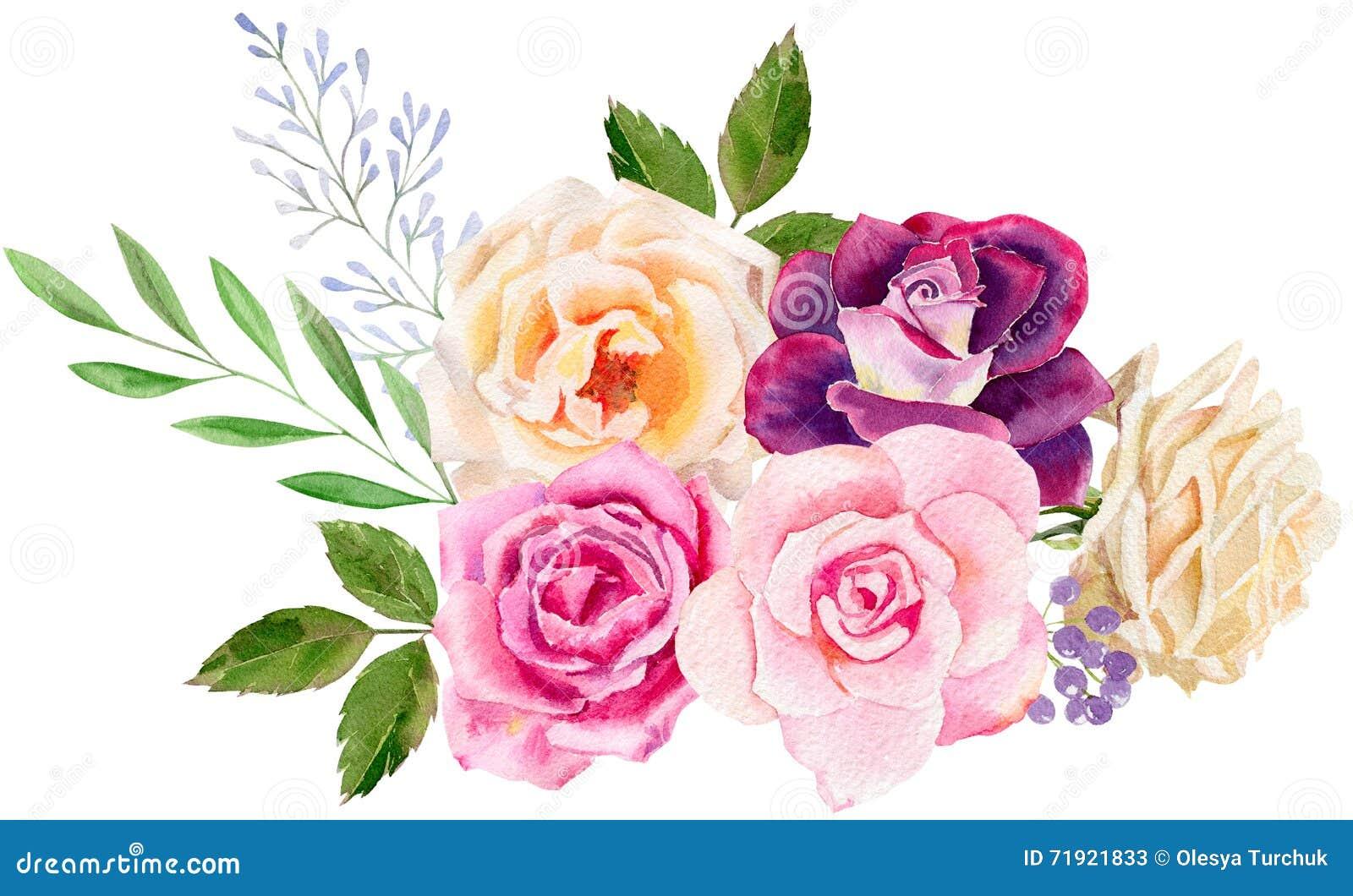 Plantilla pintada a mano del clipart de la maqueta de la acuarela de rosas