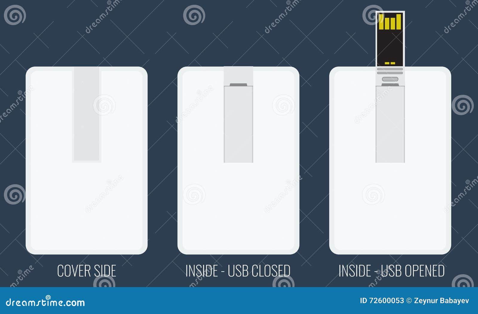 Plantilla Vacía De La Tarjeta Flash Del USB Para La Identidad ...