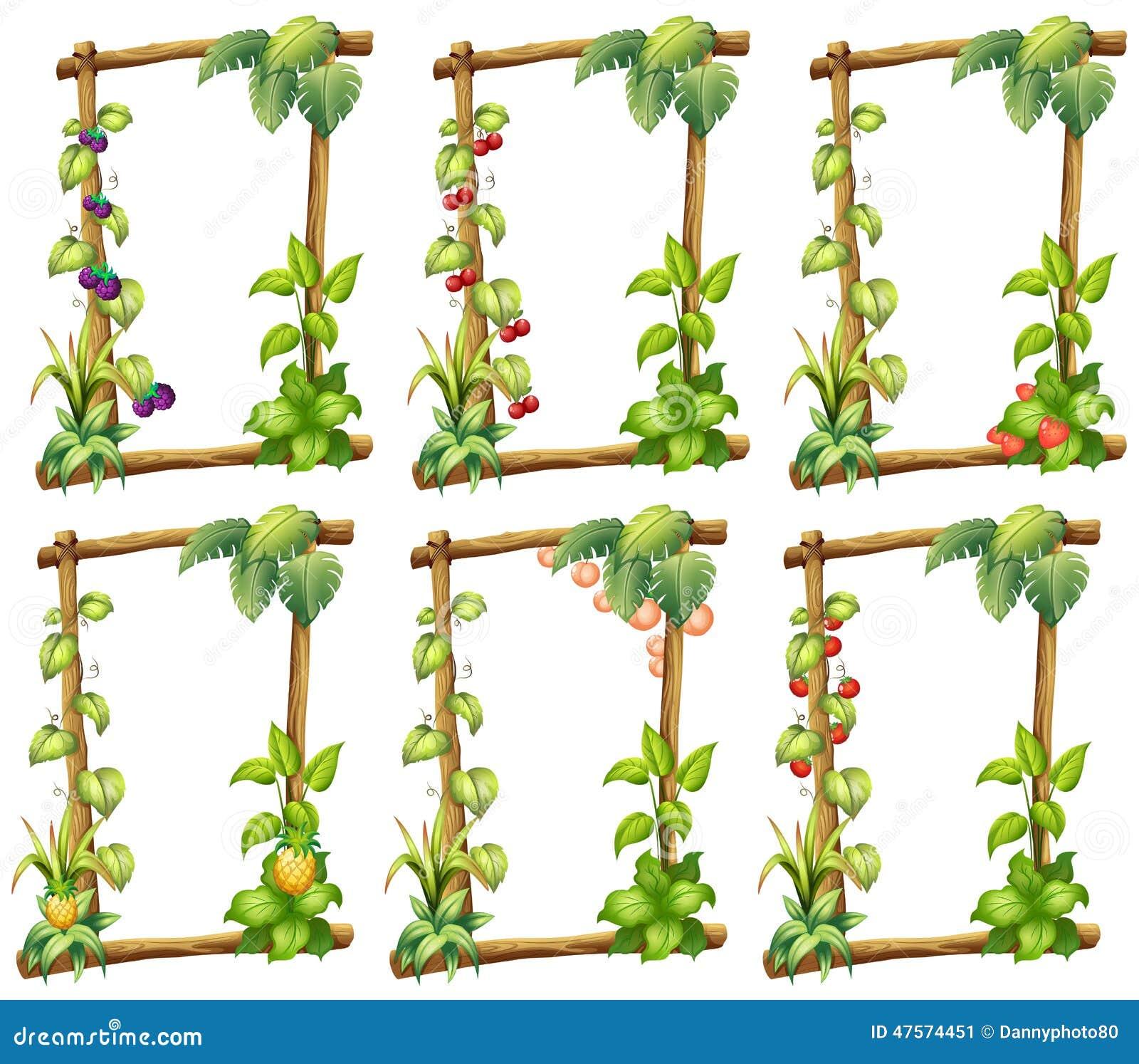 Plantillas de la planta ilustración del vector. Ilustración de ...
