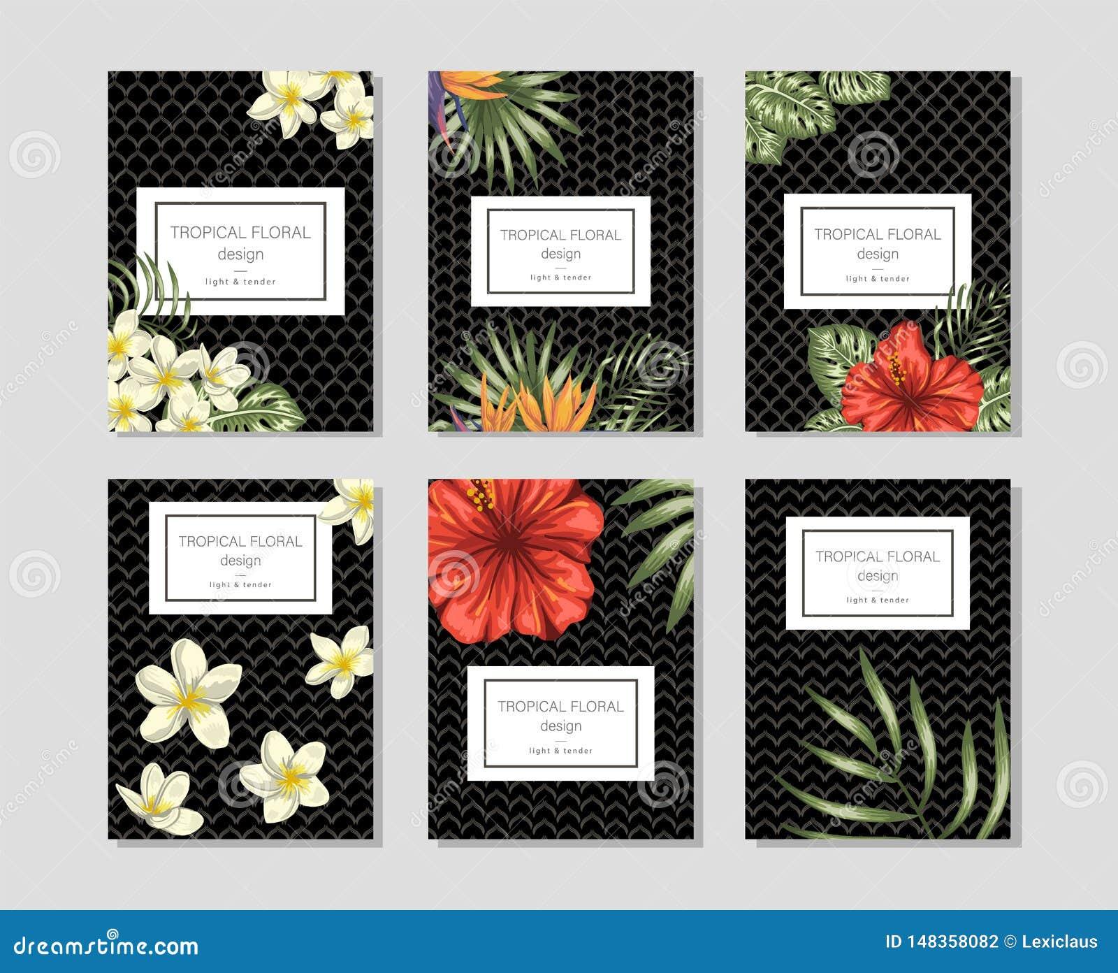 Plantillas florales tropicales con los manojos exhaustos de la mano