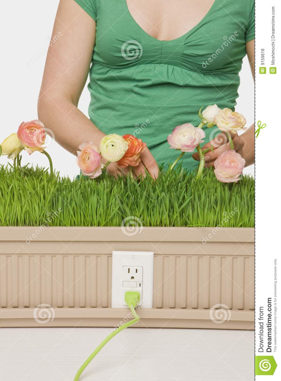 Planting For A Brighter Future Stock Photo Image Of Ideas