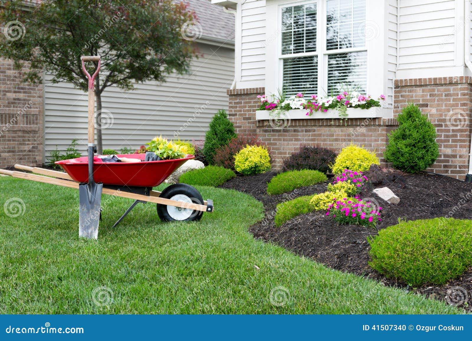 Planting A Celosia Flower Garden Around House Stock Photo Image 41507340