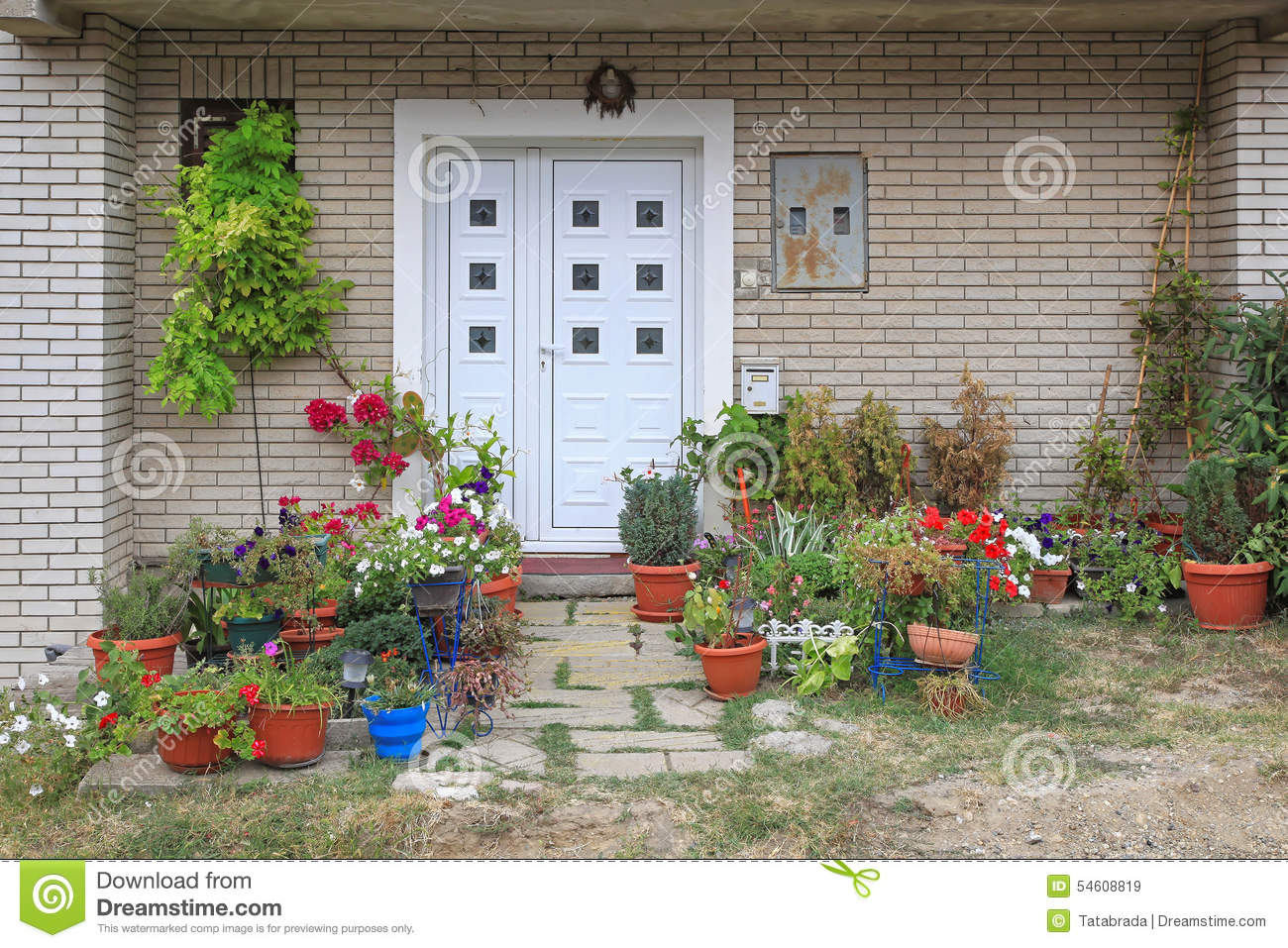 Plants entrance stock photo image 54608819 for Plants for front of house