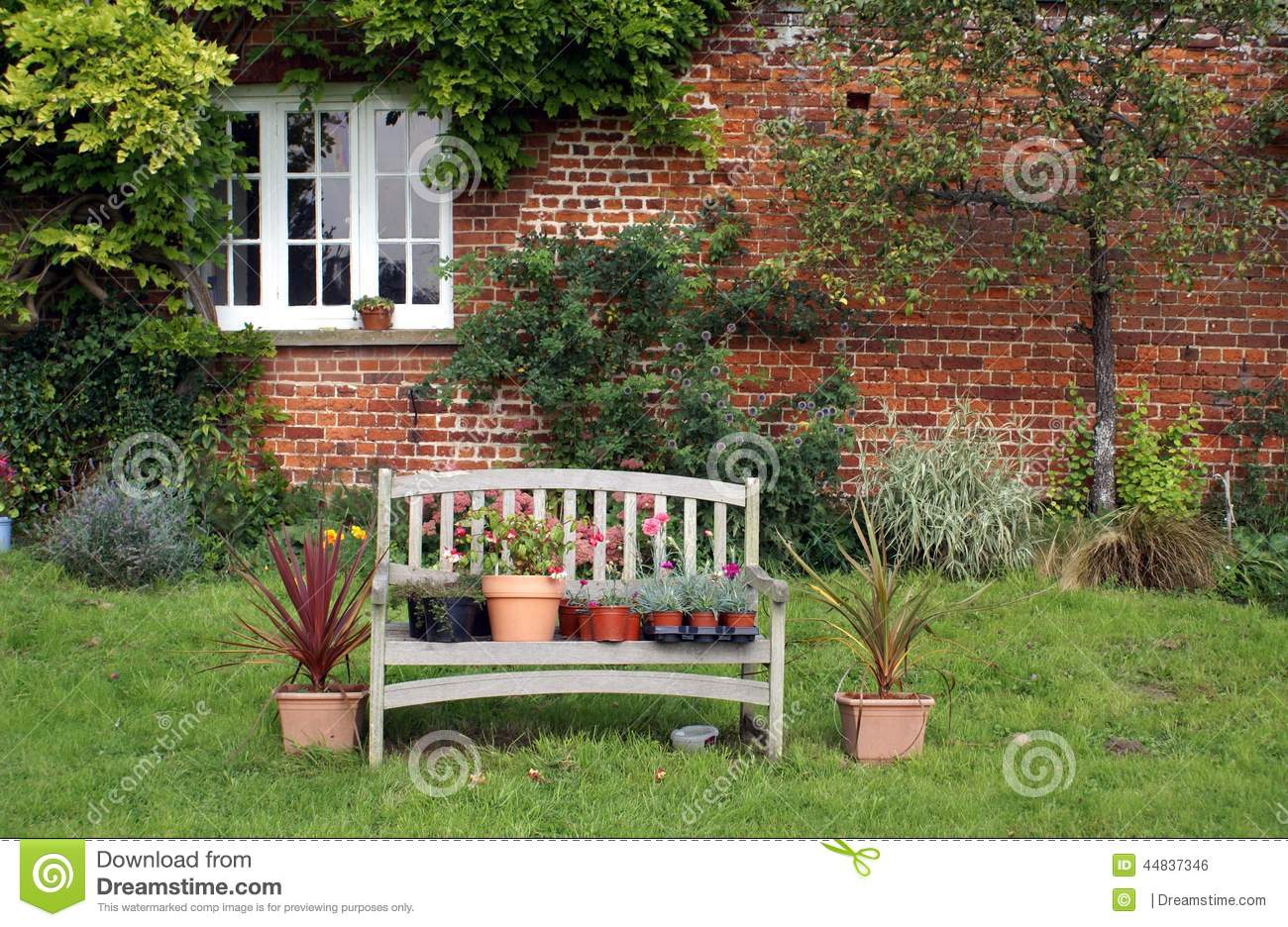 Plants & Flowers In Pots On Wooden Bench Stock Photo ...