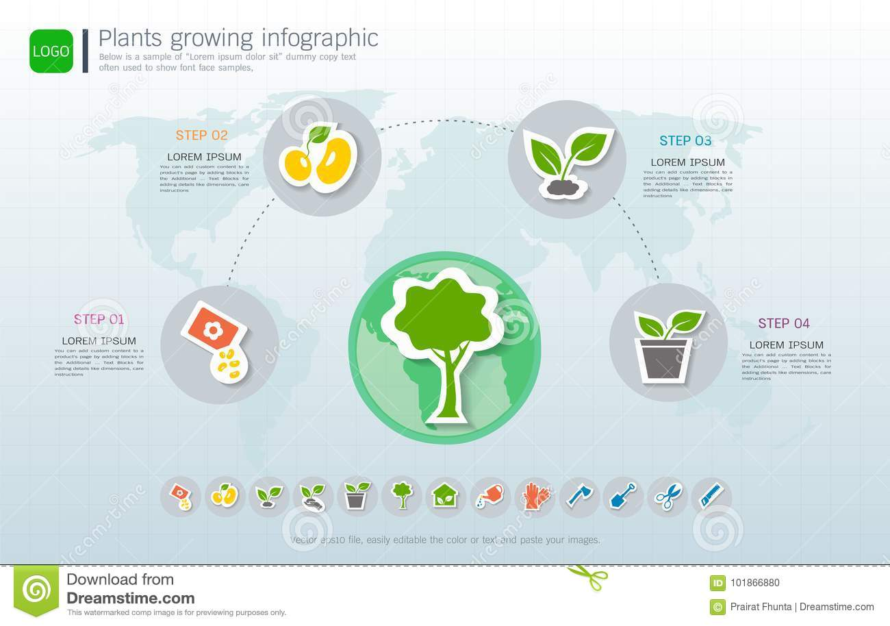 plants growing timeline infographic with icons set, save the world and go  green concept